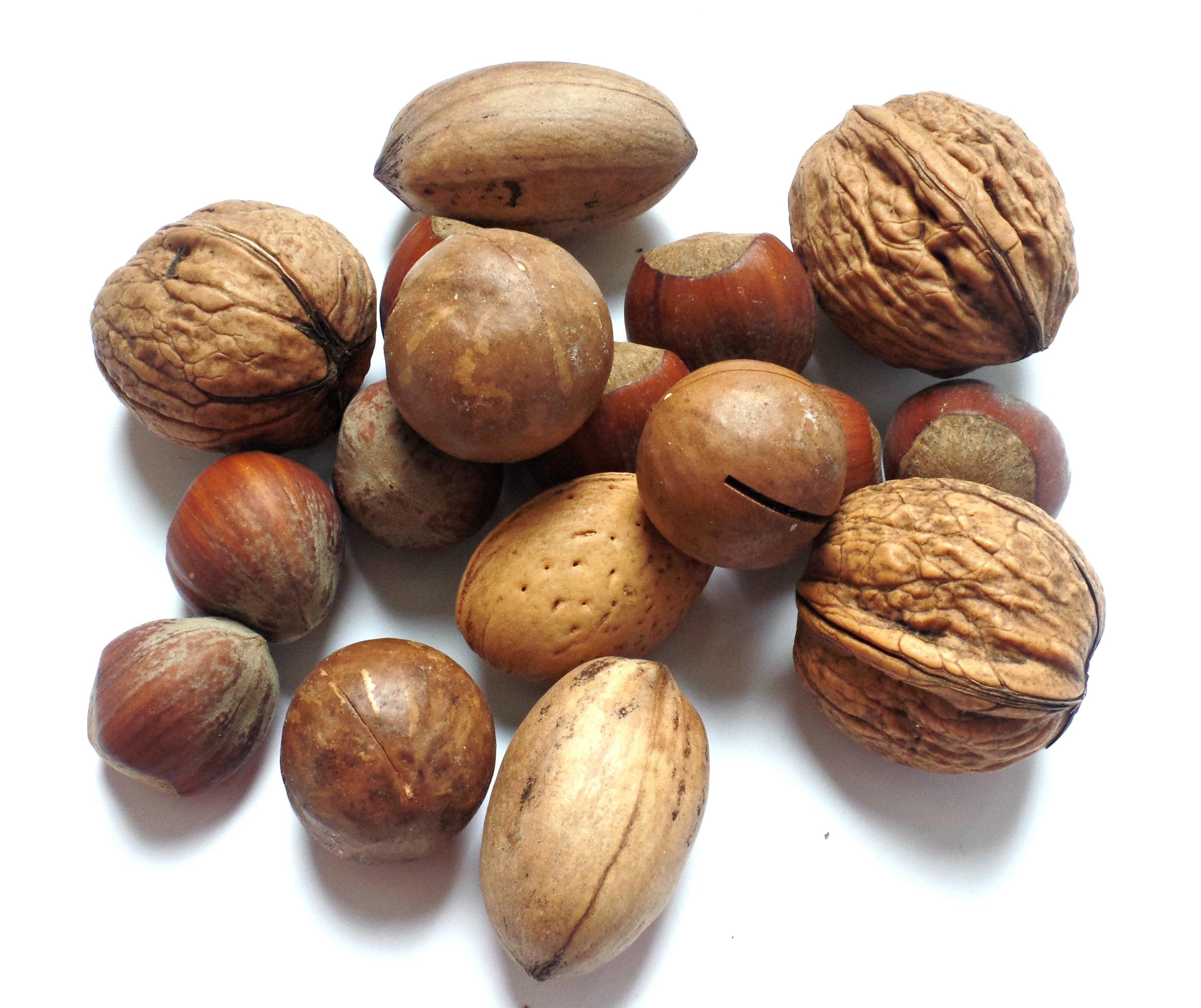 assorted nut lot free image | Peakpx