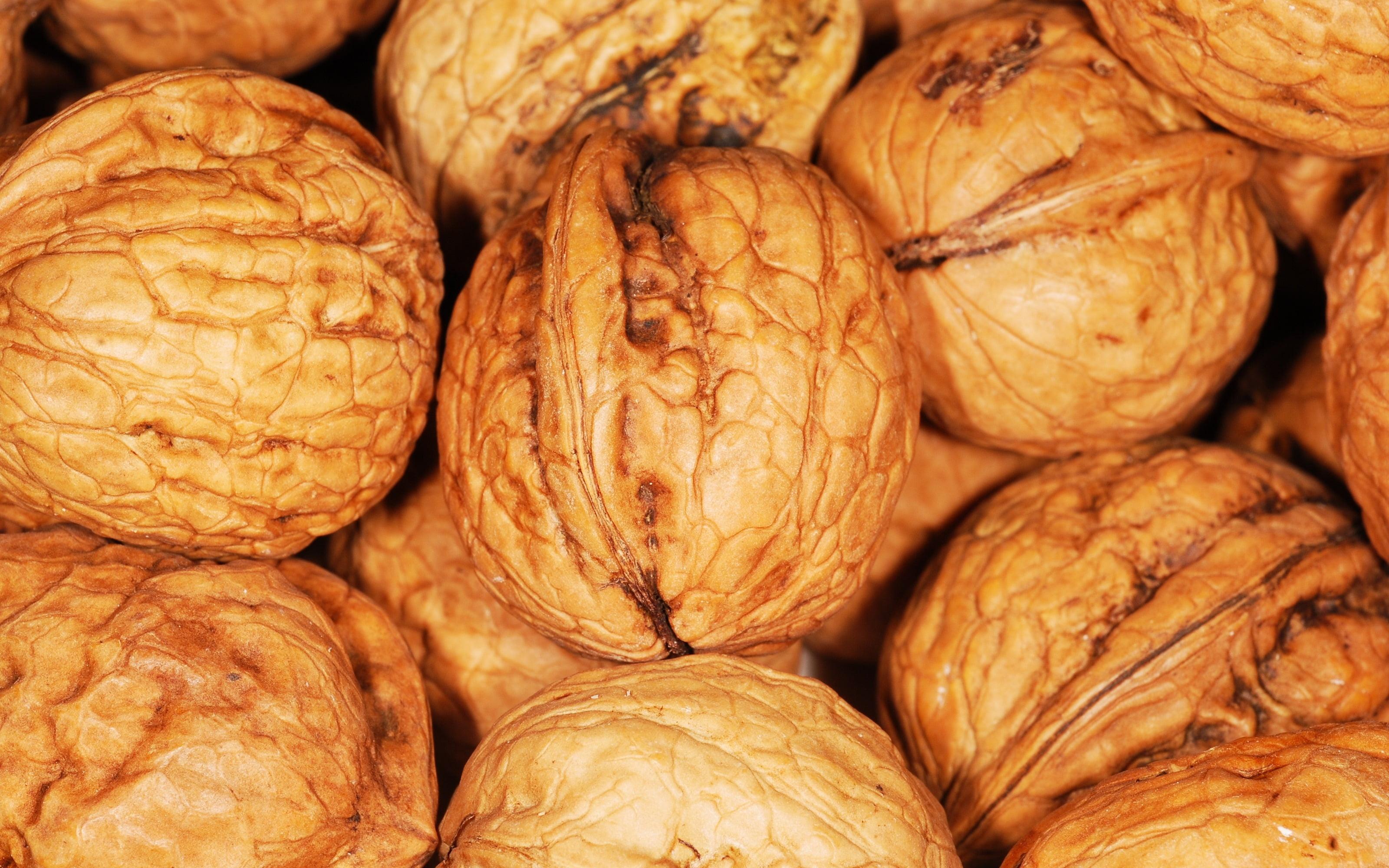 Brown nut lot HD wallpaper | Wallpaper Flare