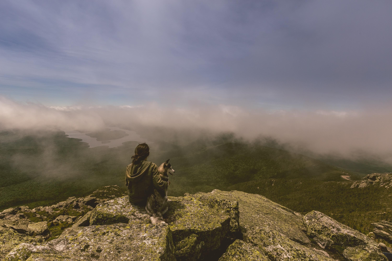 Observing, Dog, Landscape, Man, Mountain, HQ Photo