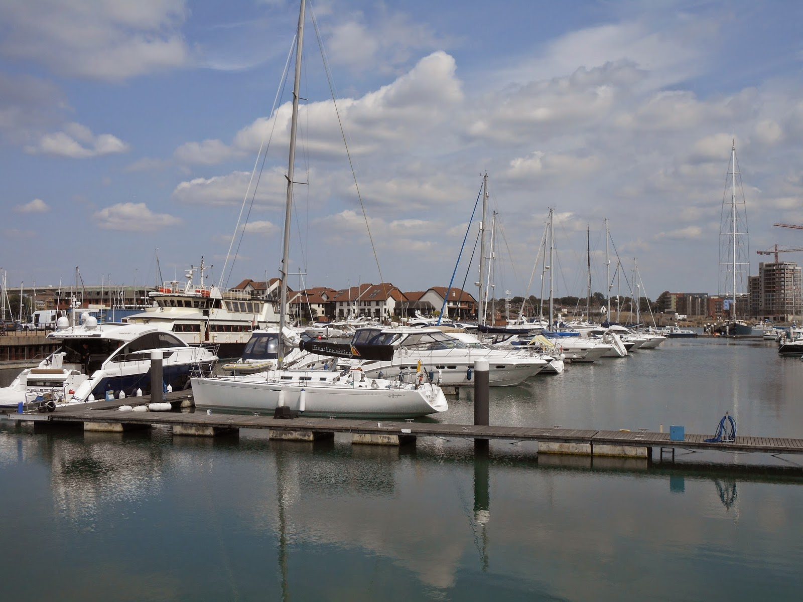 Nature Notes and Observations: Ocean Village, Southampton Re-visited