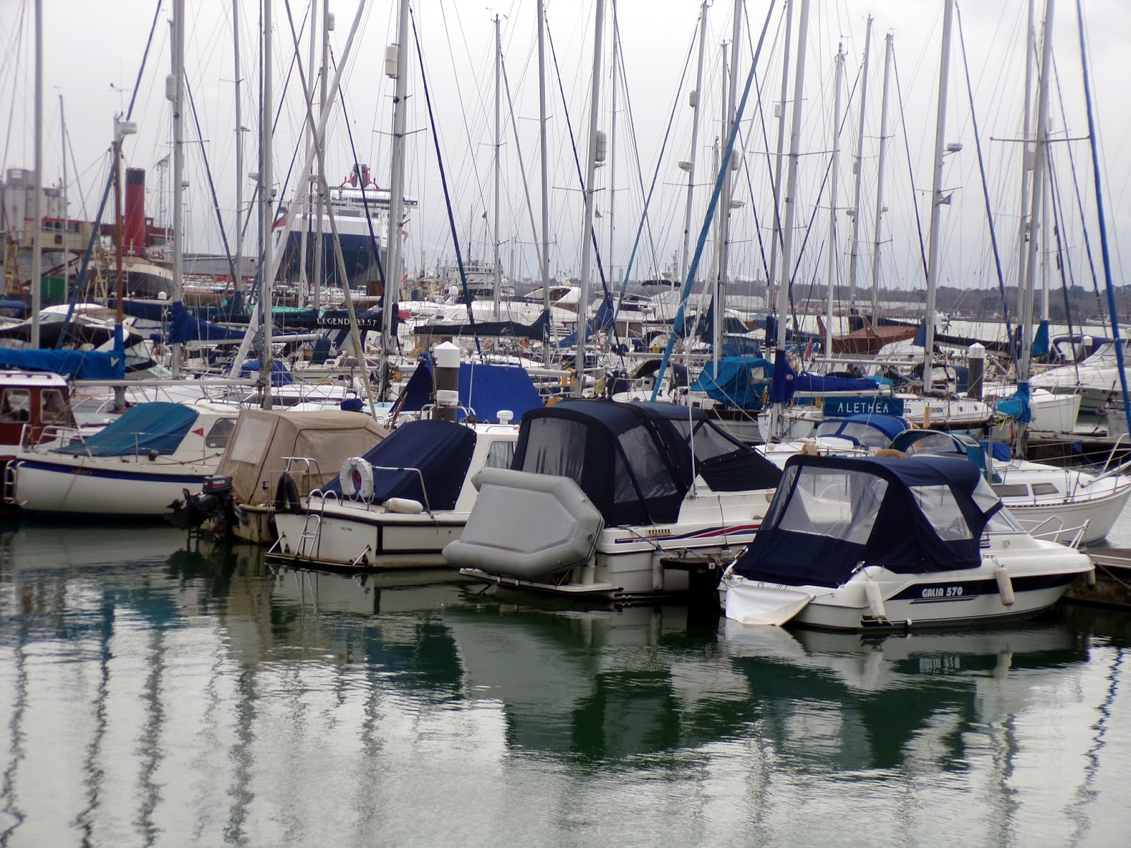 Enjoy your time with beautiful places: Ocean Village Marina ...