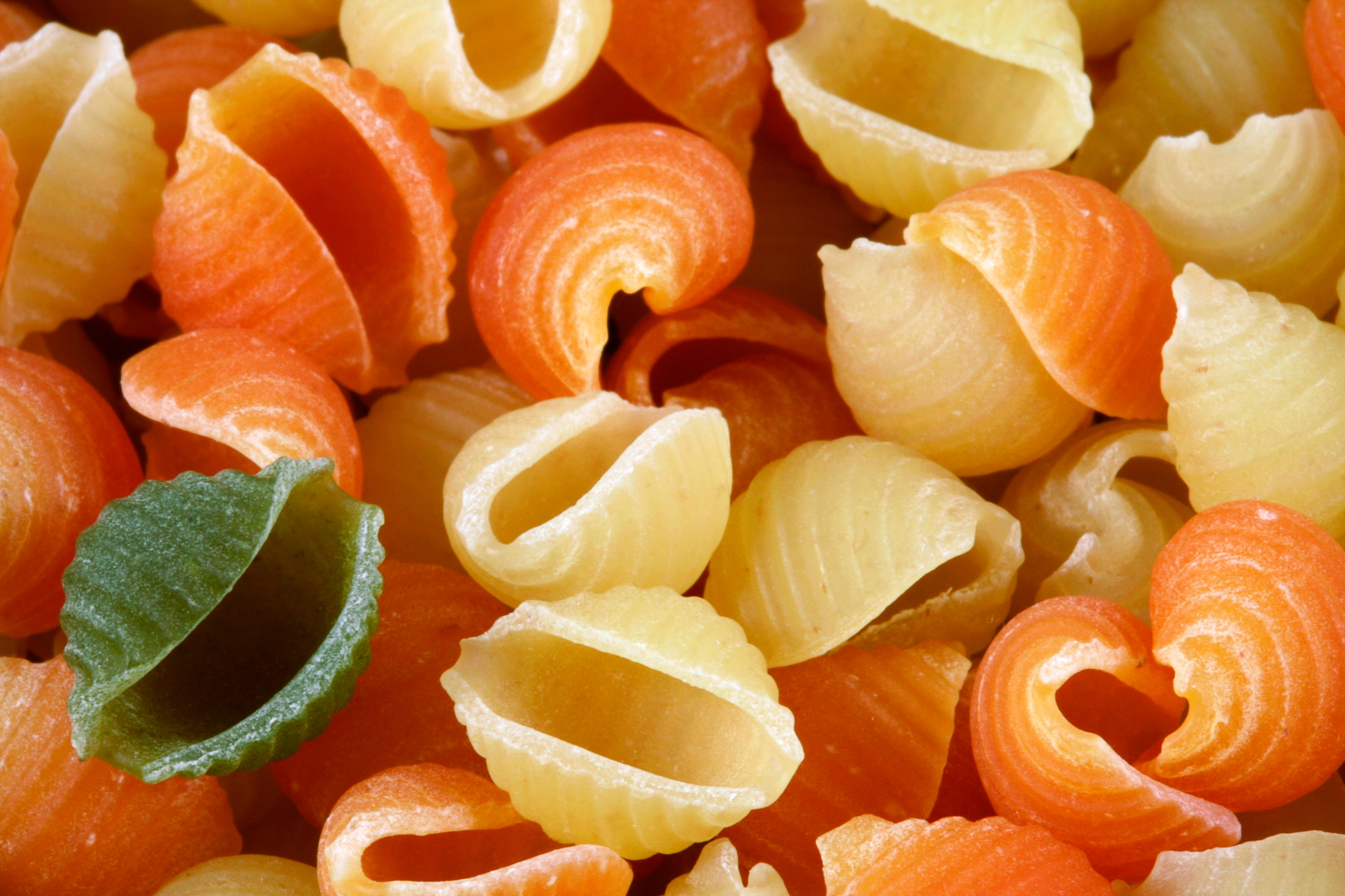 Odd Pasta Out, Alone, Shell, Nutritious, Orange, HQ Photo