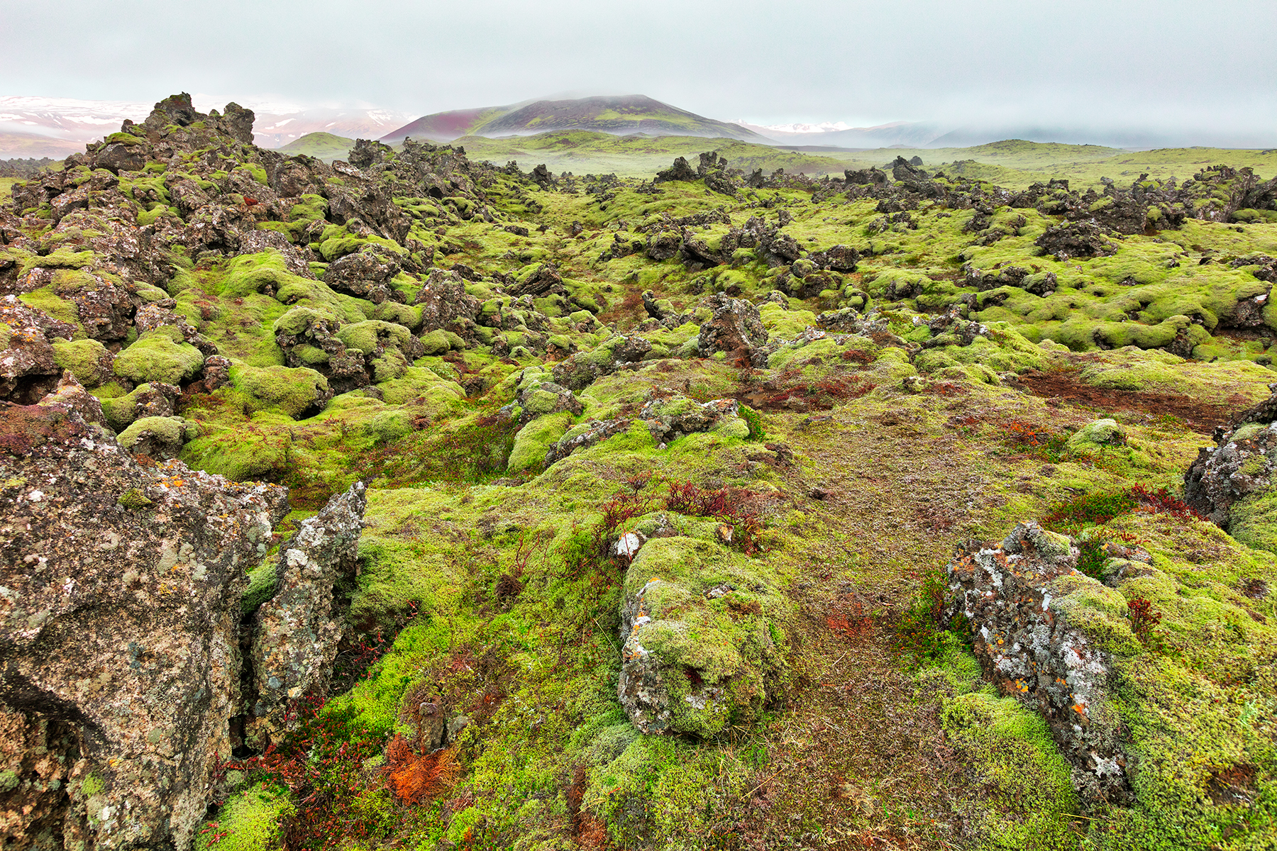 Of moss, mist, and rugged rocks photo