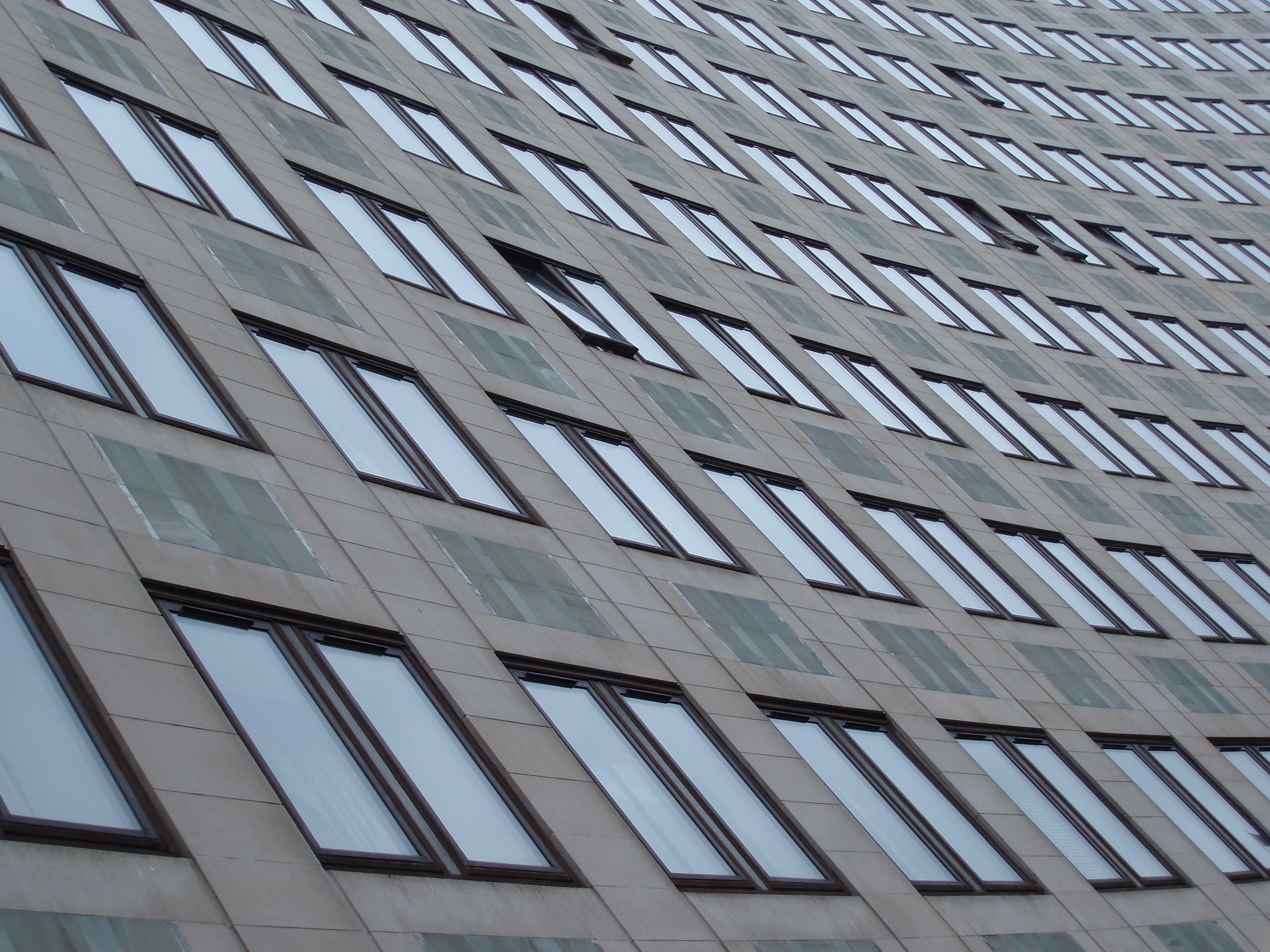 Office windows photo