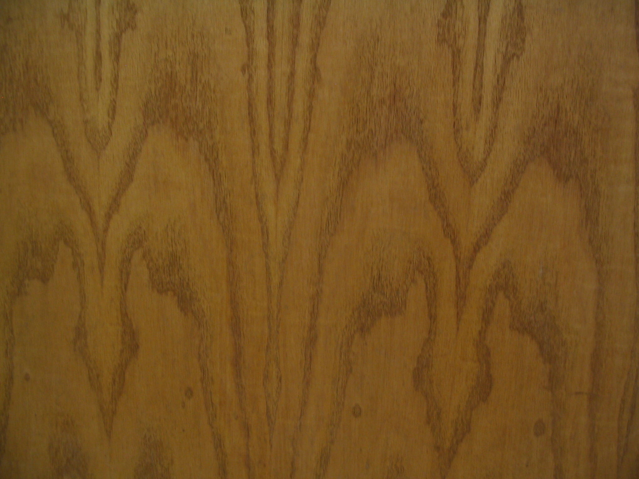 Wood Identification Guide | The Wood Database