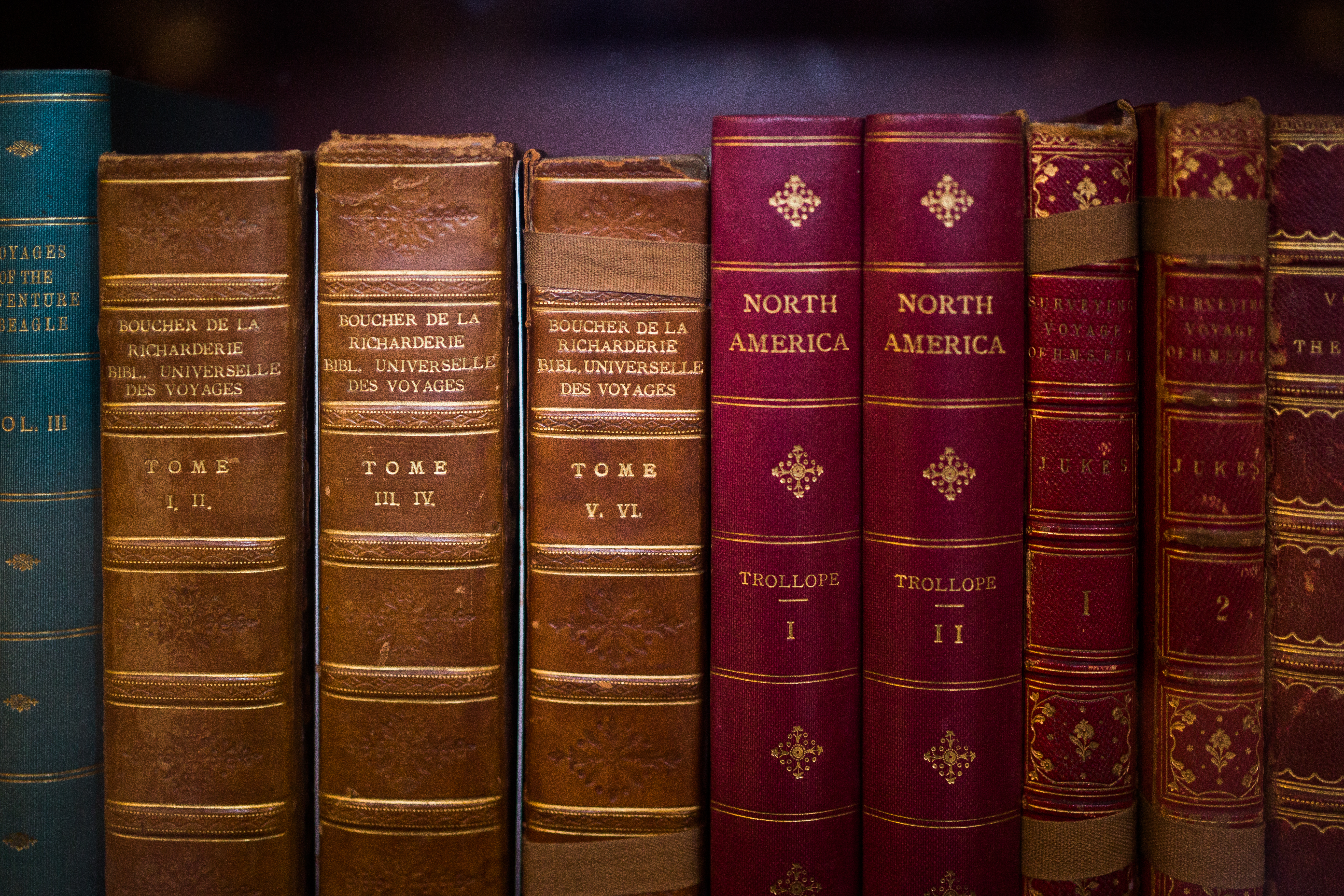 Old Books, Books, Knowledge, Law, Notes, HQ Photo