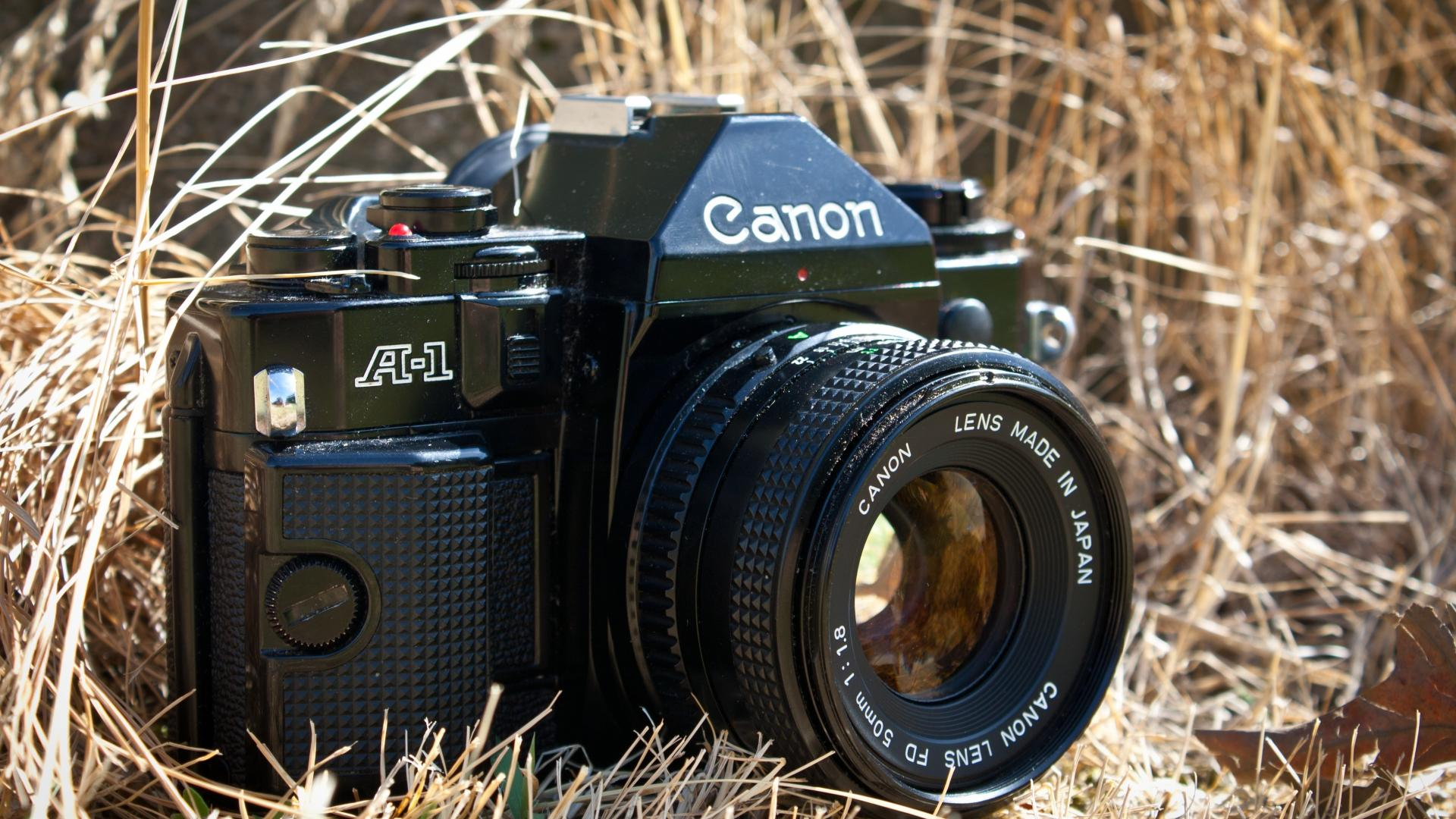 Old canon photo