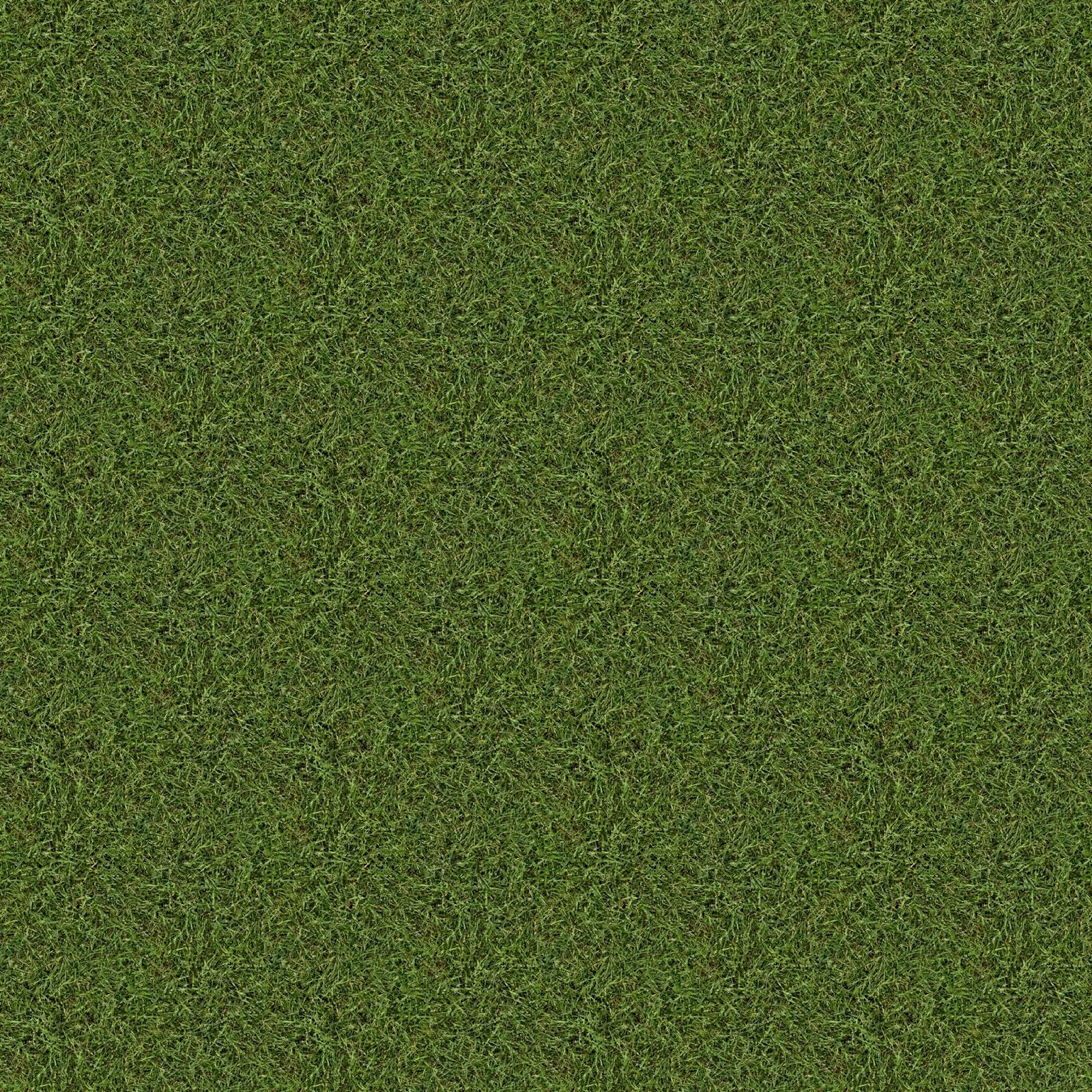 High Resolution Seamless Textures: Old Grass Texture Made Seamless