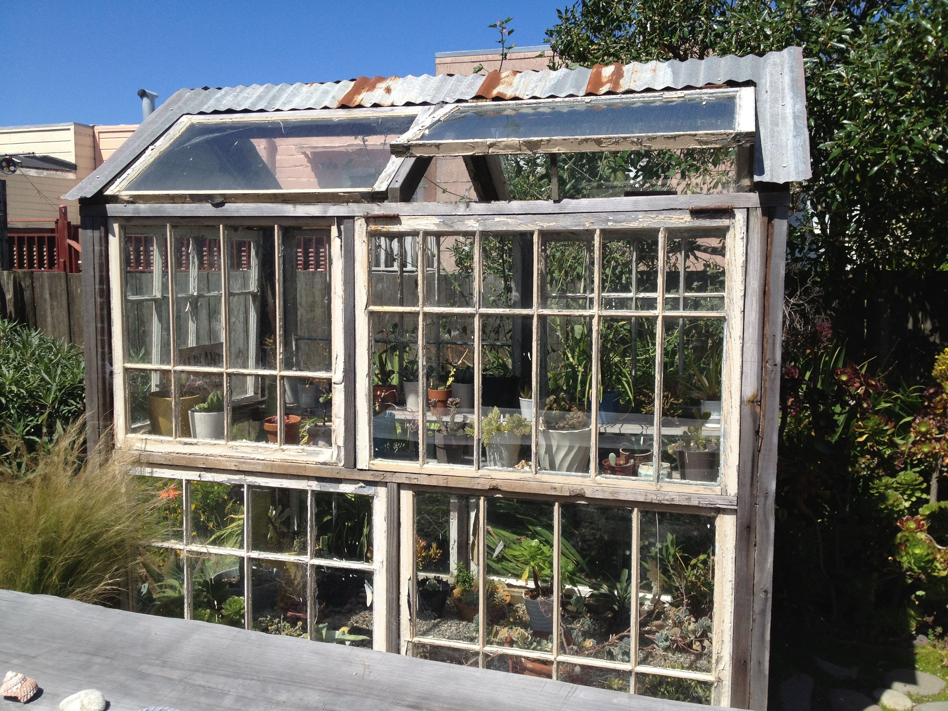 Old Windows + The Outer Sunset = Happy Plants | | Garden Pleasures ...