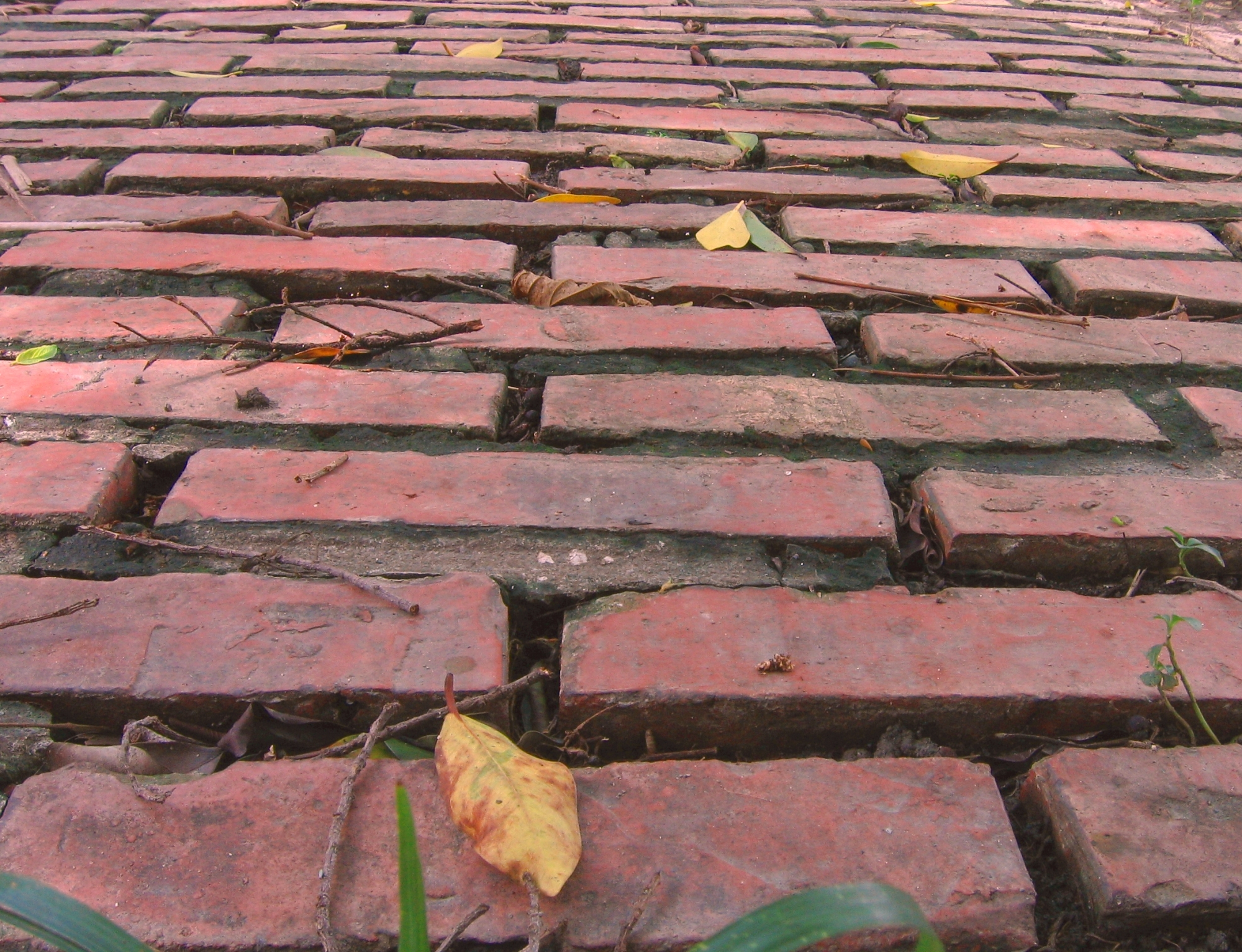 Old Red Brick Road, Ancient, Quaint, Used, Uneven, HQ Photo