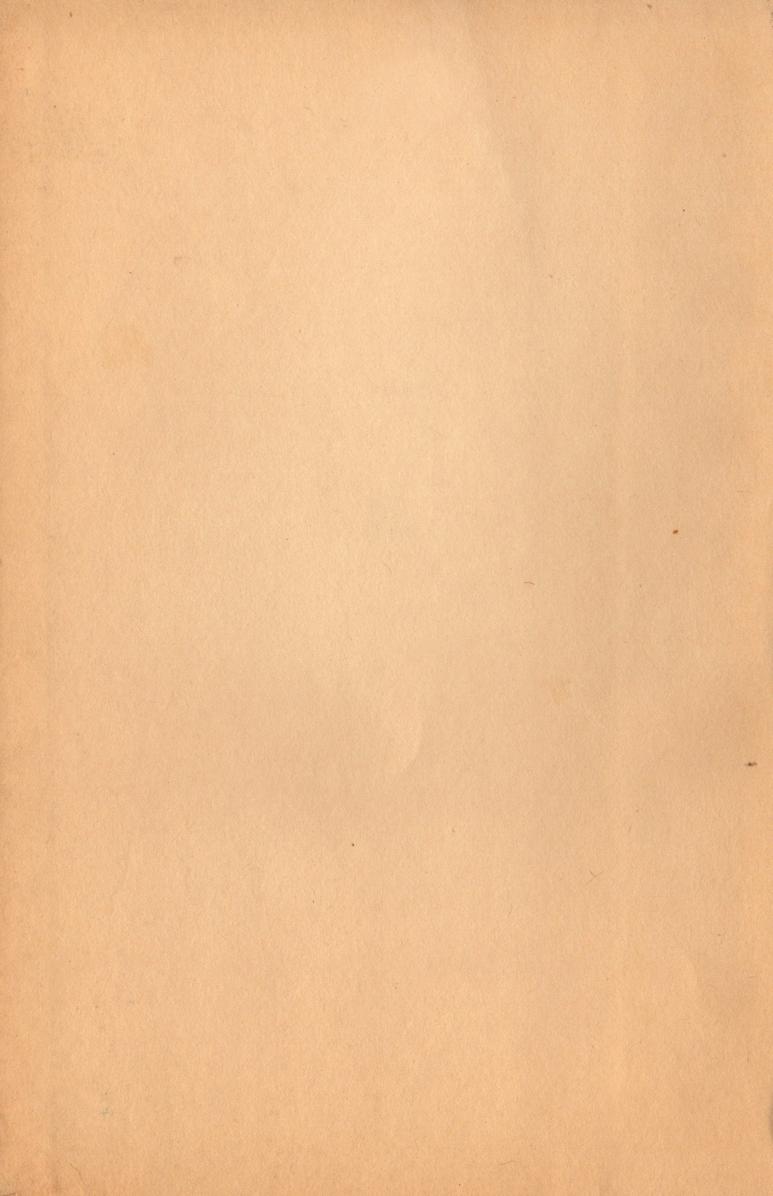 Old vintage paper texture photo