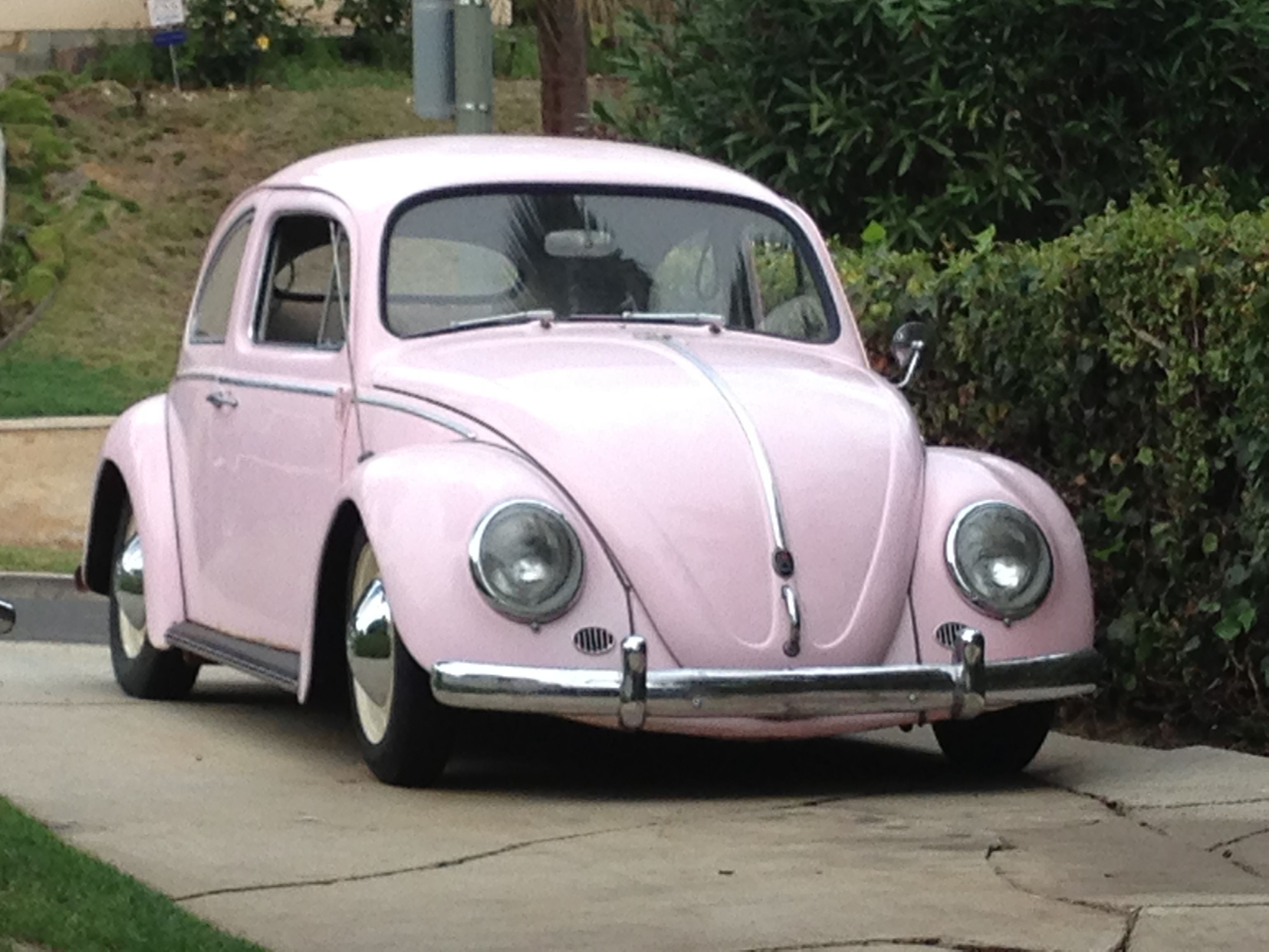 This is my old VW beetle... The Pink Panther! | Pinterest