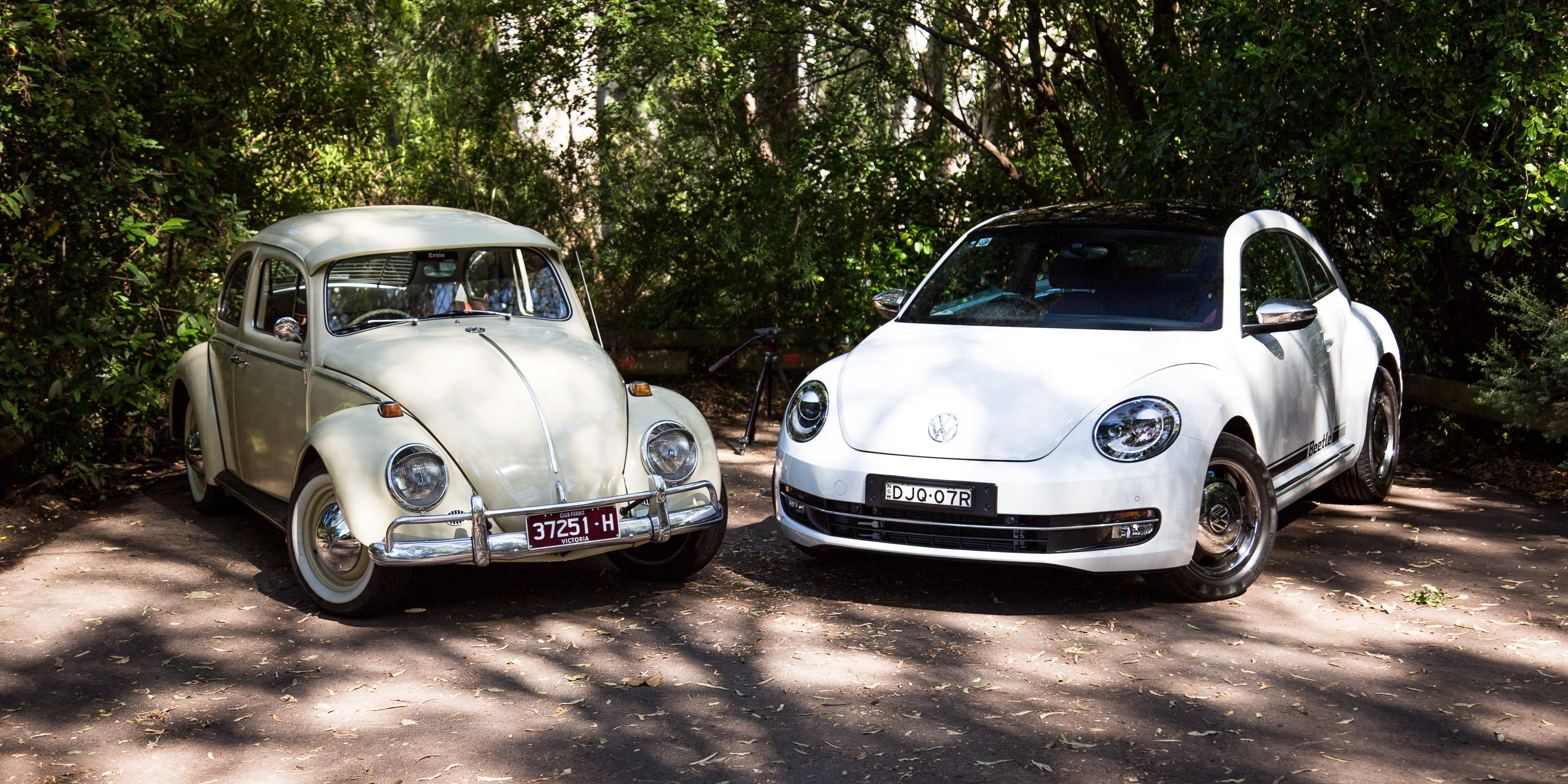 Volkswagen Beetle Old v New: 1965 v 2017 - Photos