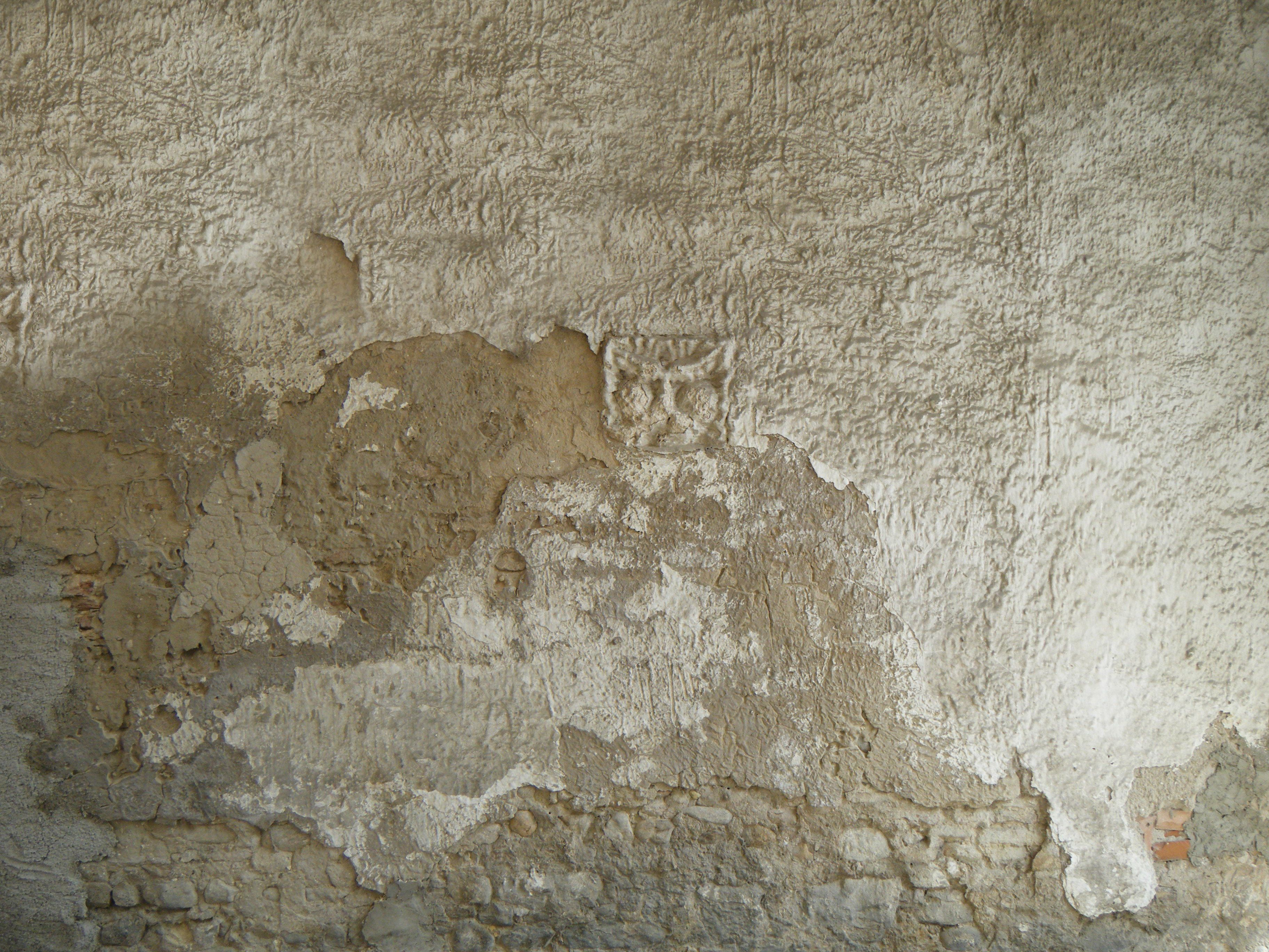 free photo old wall texture stucco surface texture free