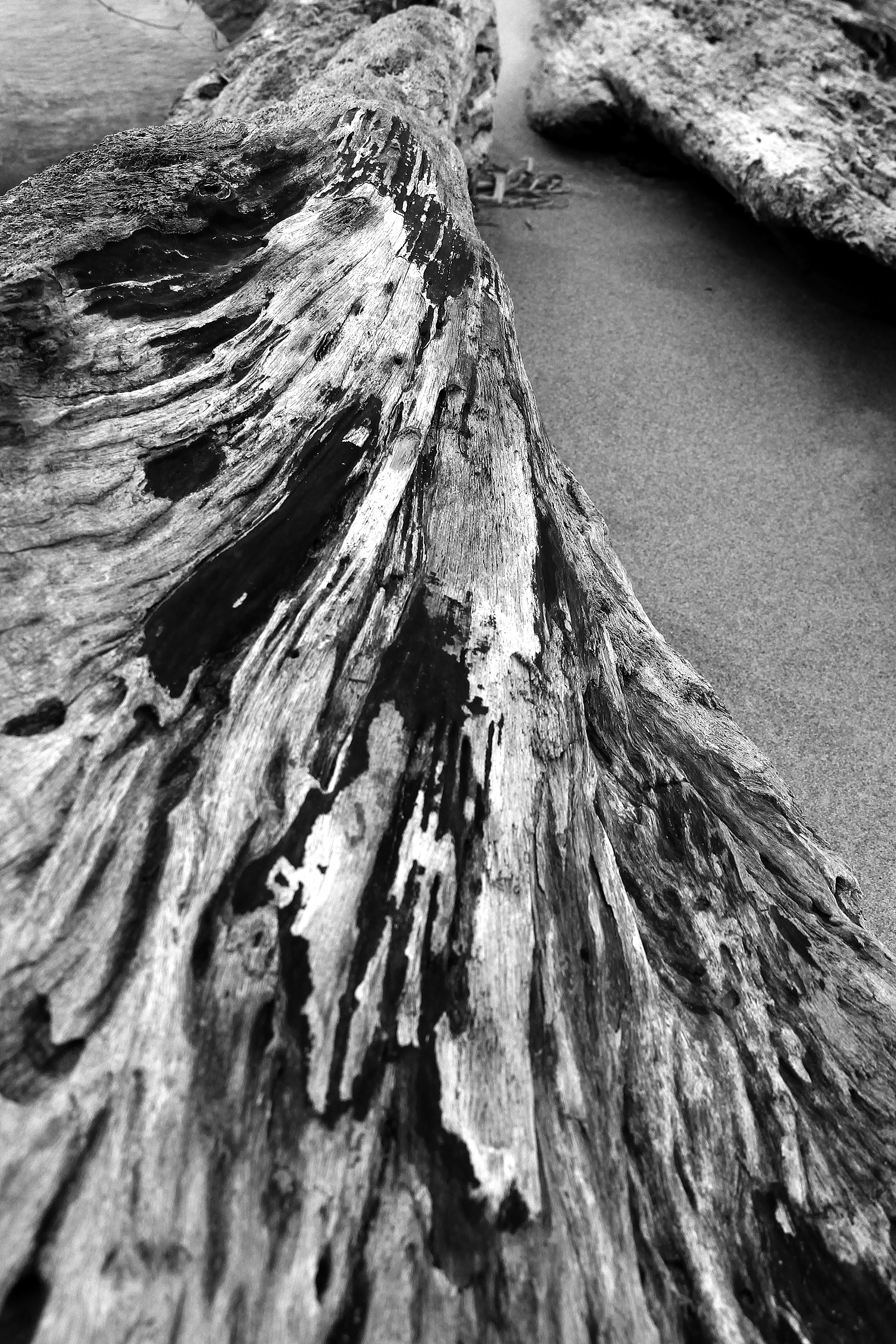 Old Wood, Old, Rot, Texture, Wood, HQ Photo