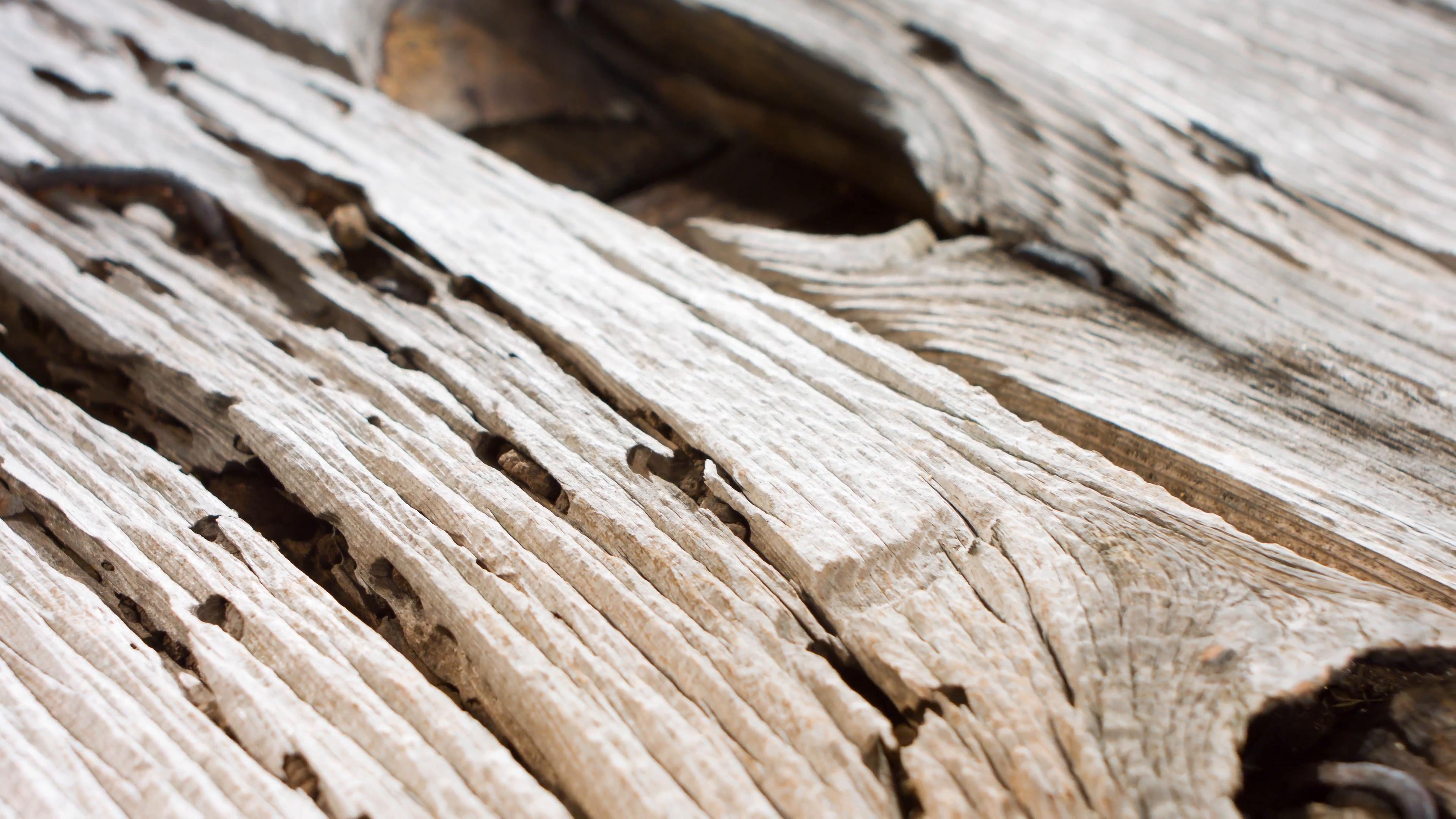 Weathered old wood 4k Stock Video Footage - Videoblocks