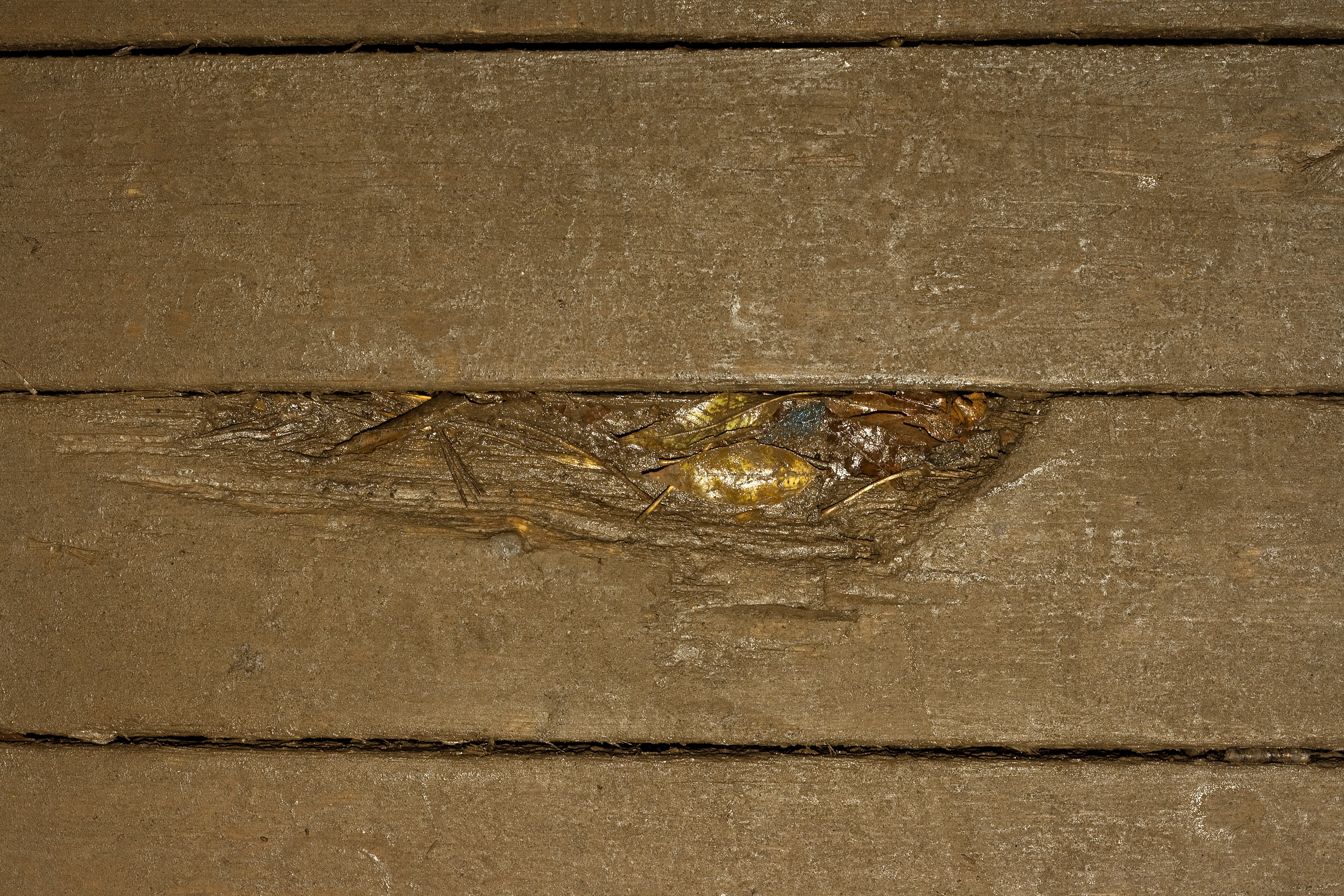 Old Wood Background, Boards, Close-up, Old, Planks, HQ Photo