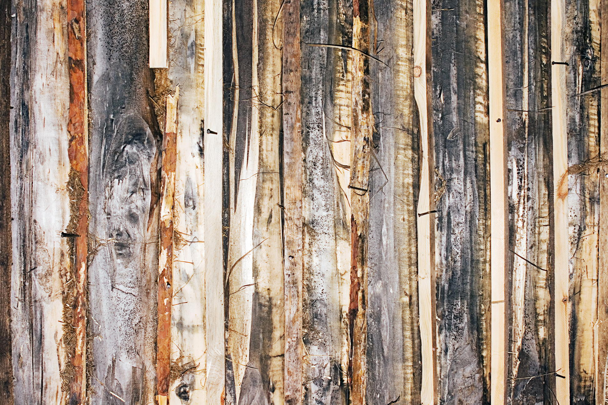 Old wood background photo