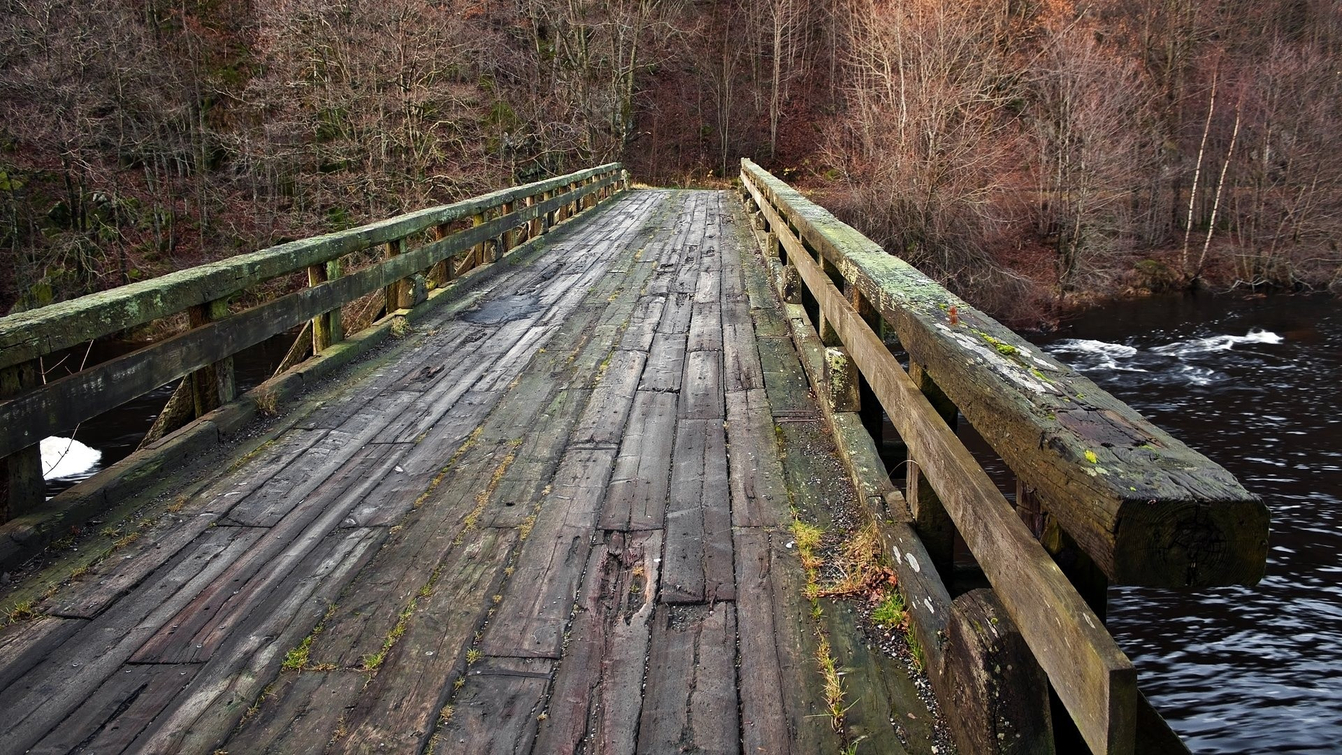 Bridges: Old Wooden Bridge Autumn Forest Wood River Fall Full HD for ...