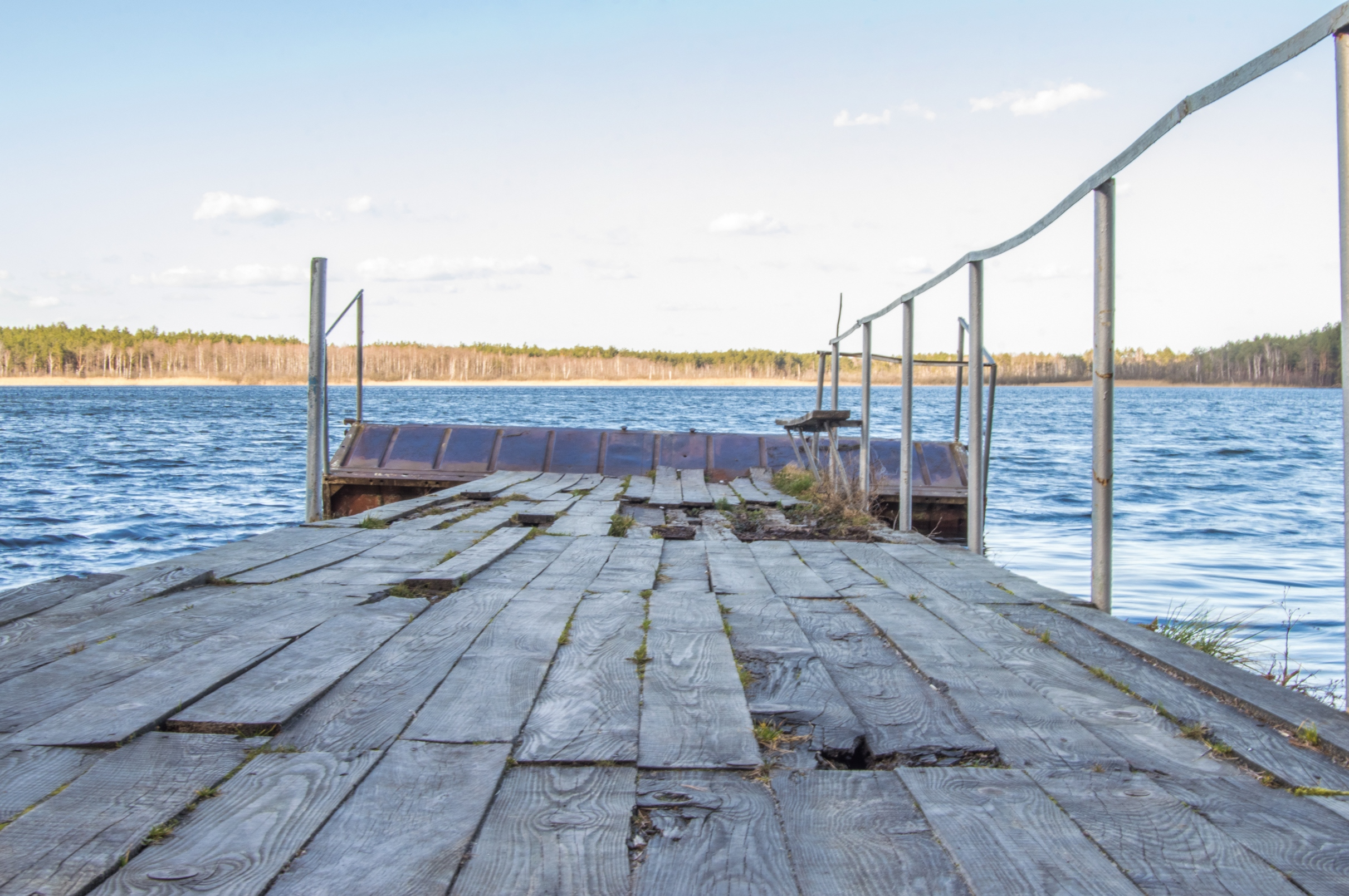 Old wooden pier with holes in rotten boards on the background of fores, River, Light, Natural, Nature, HQ Photo