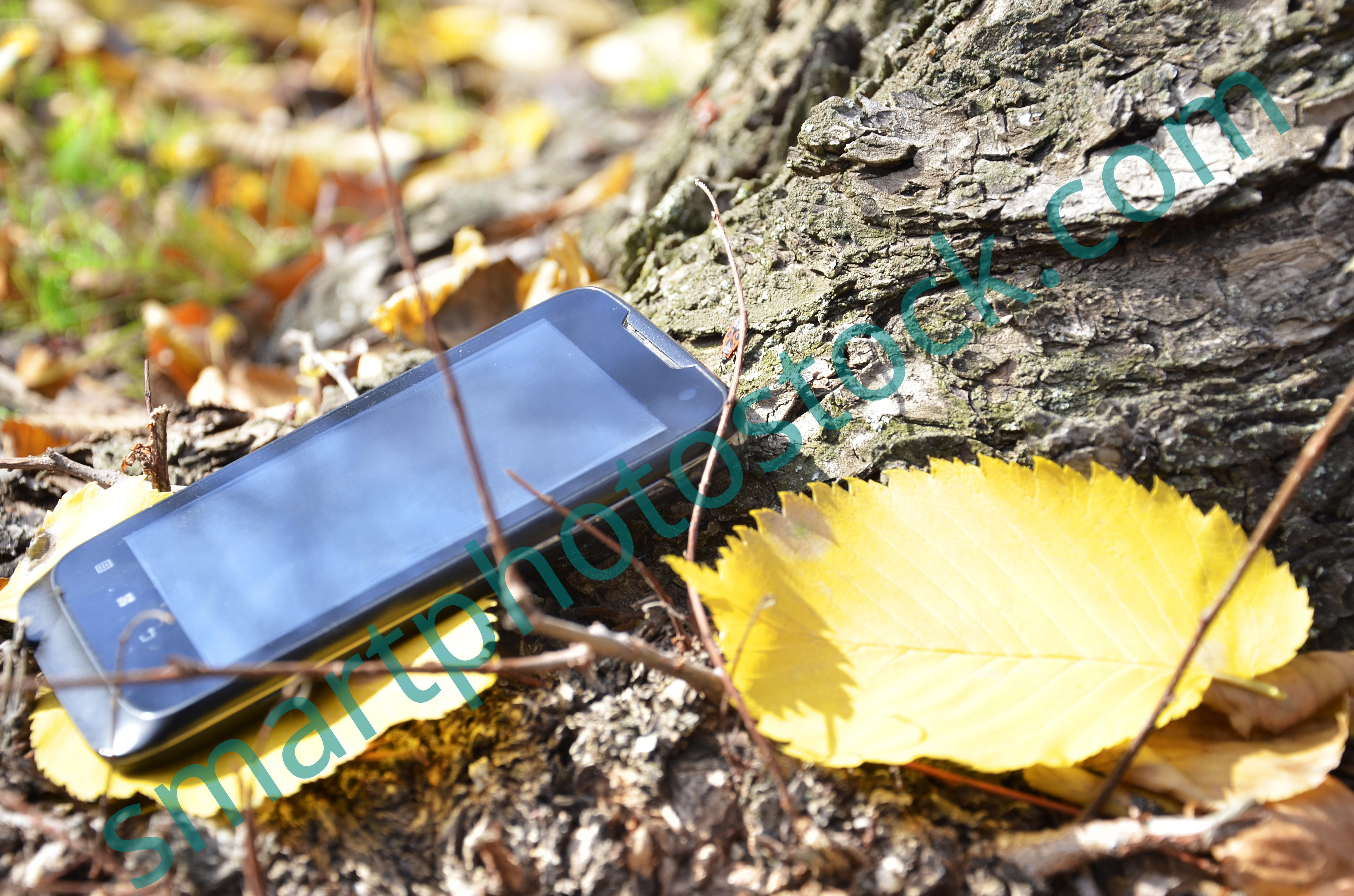 cell phone laying on the ground near the tree - Smart Photo Stock
