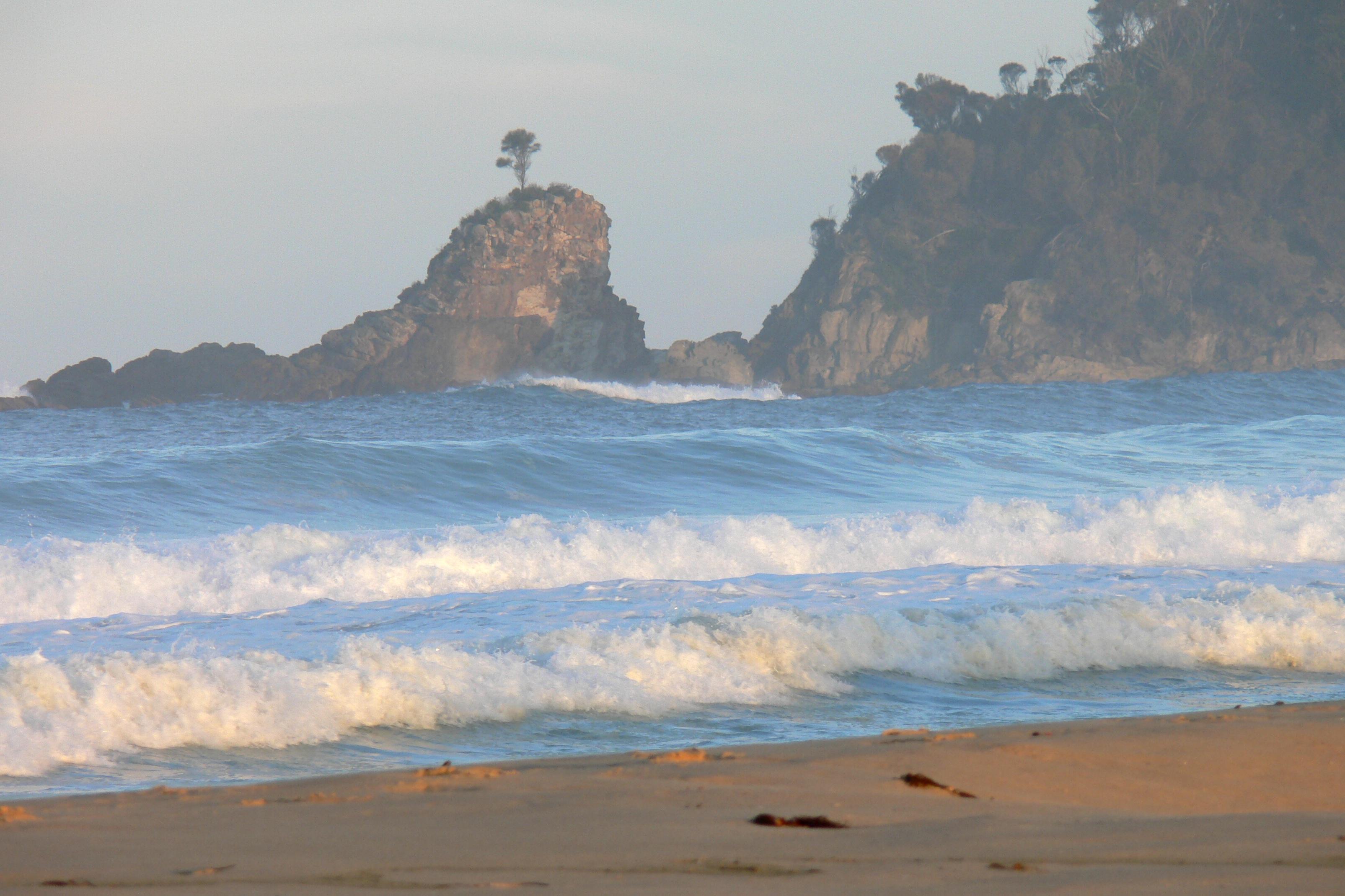 One tree rock on cuttagee beach photo