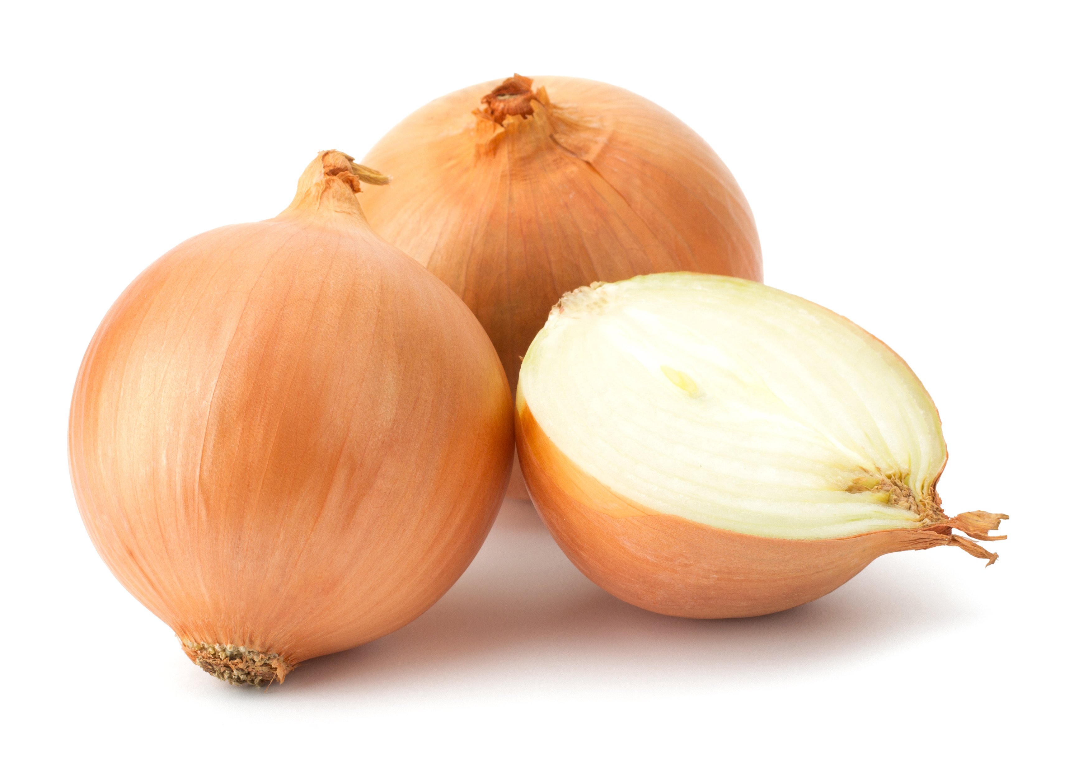 For the Love of Onions - Age Old