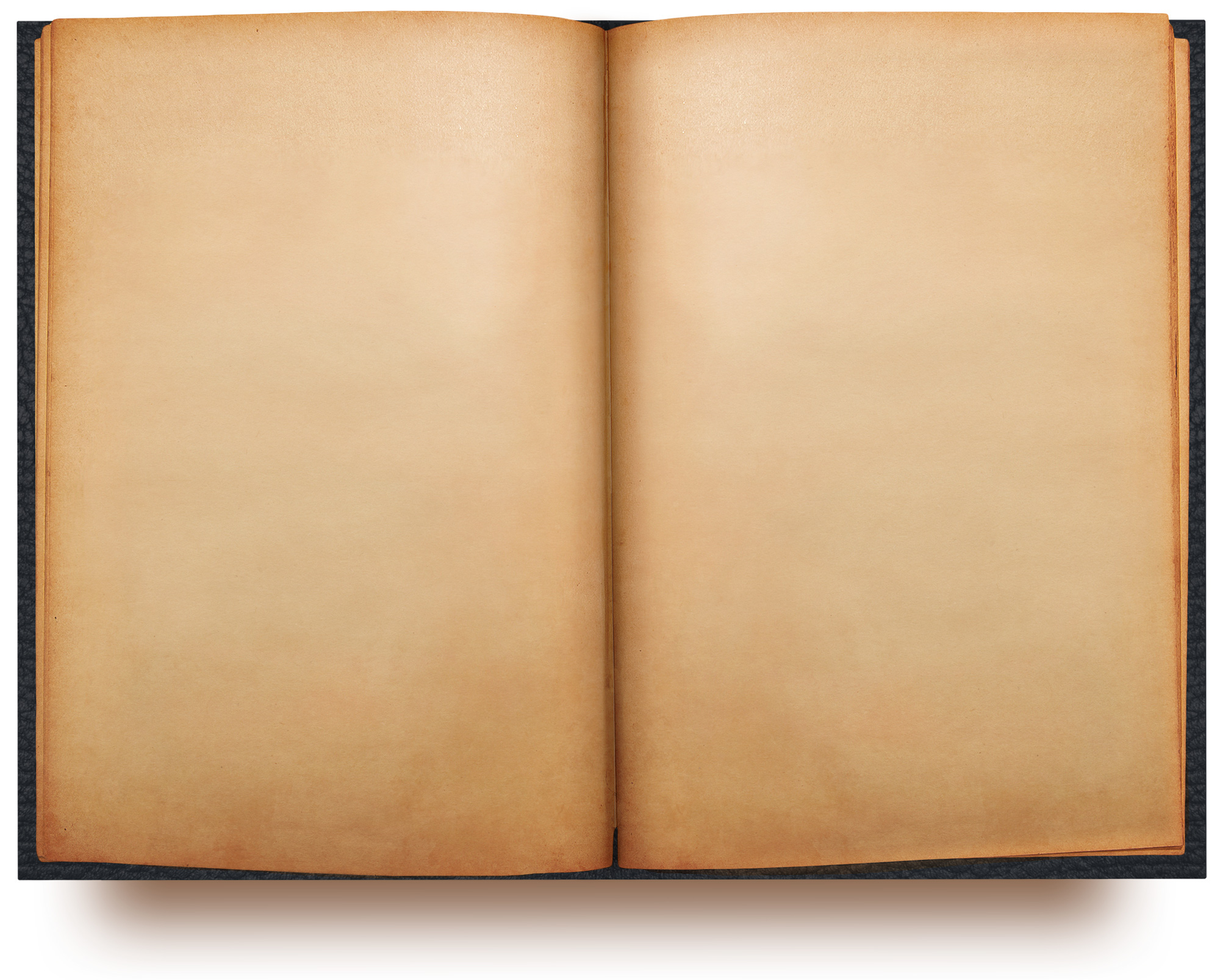 Open Book, Blank Pages on Behance