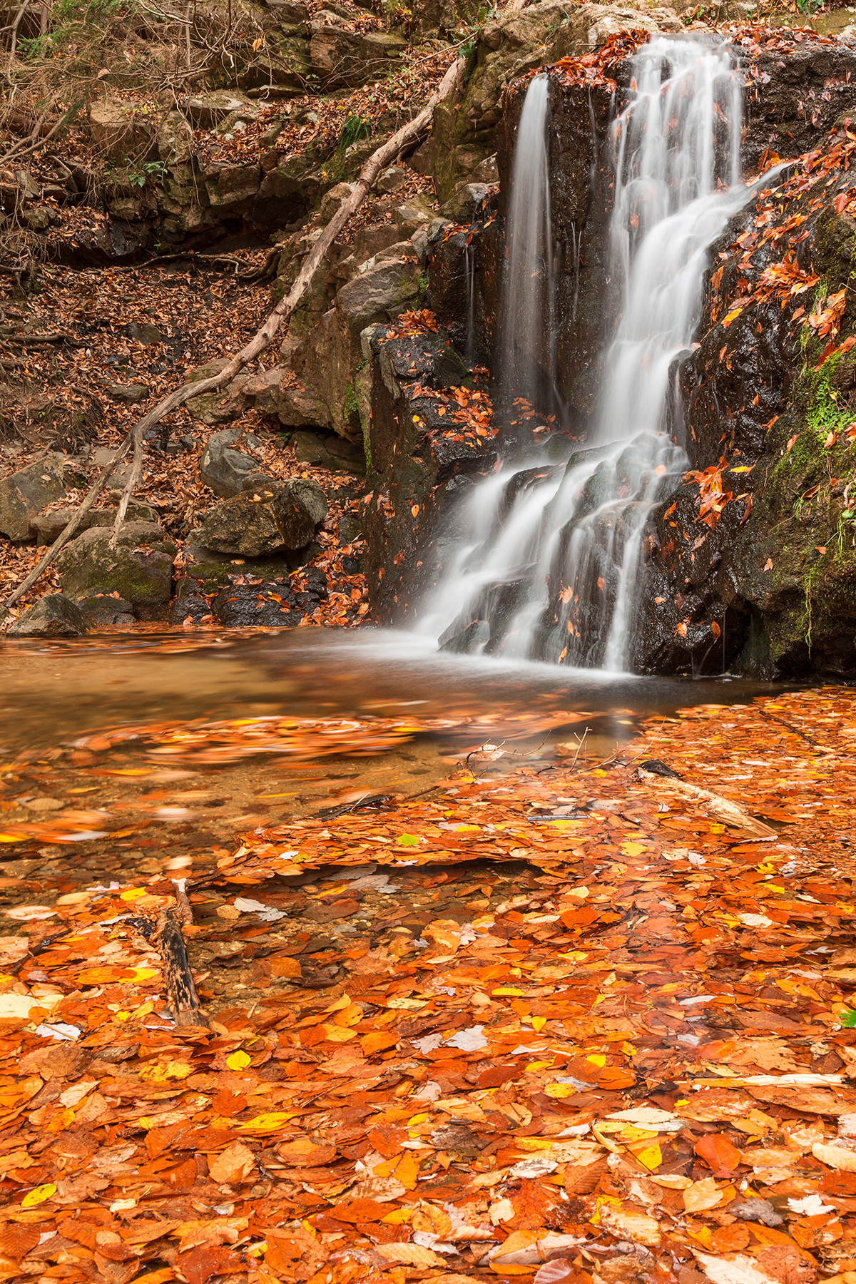 Orange Grove Waterfall, America, Patapsco, Scene, Rocky, HQ Photo