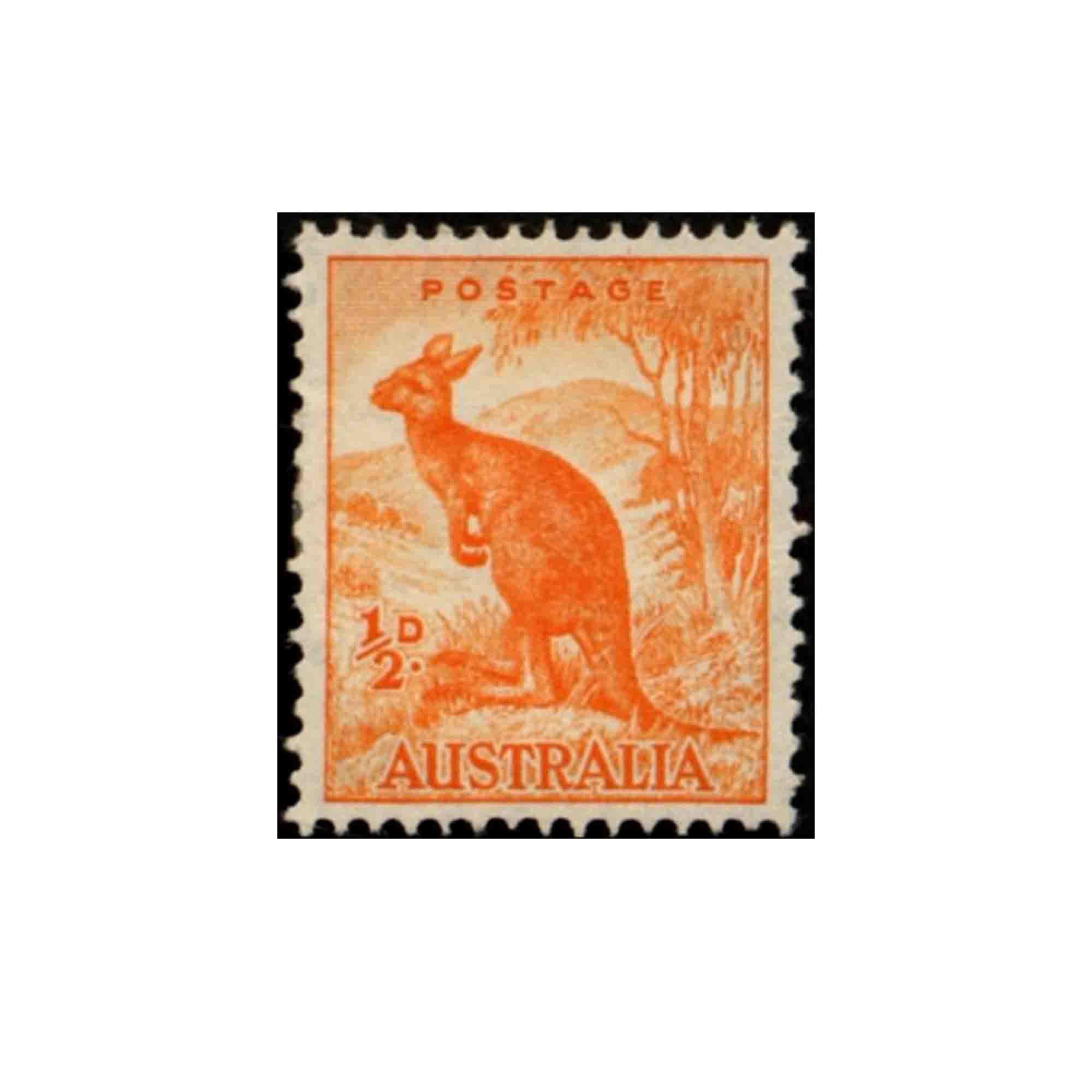 Orange kangaroo stamp photo
