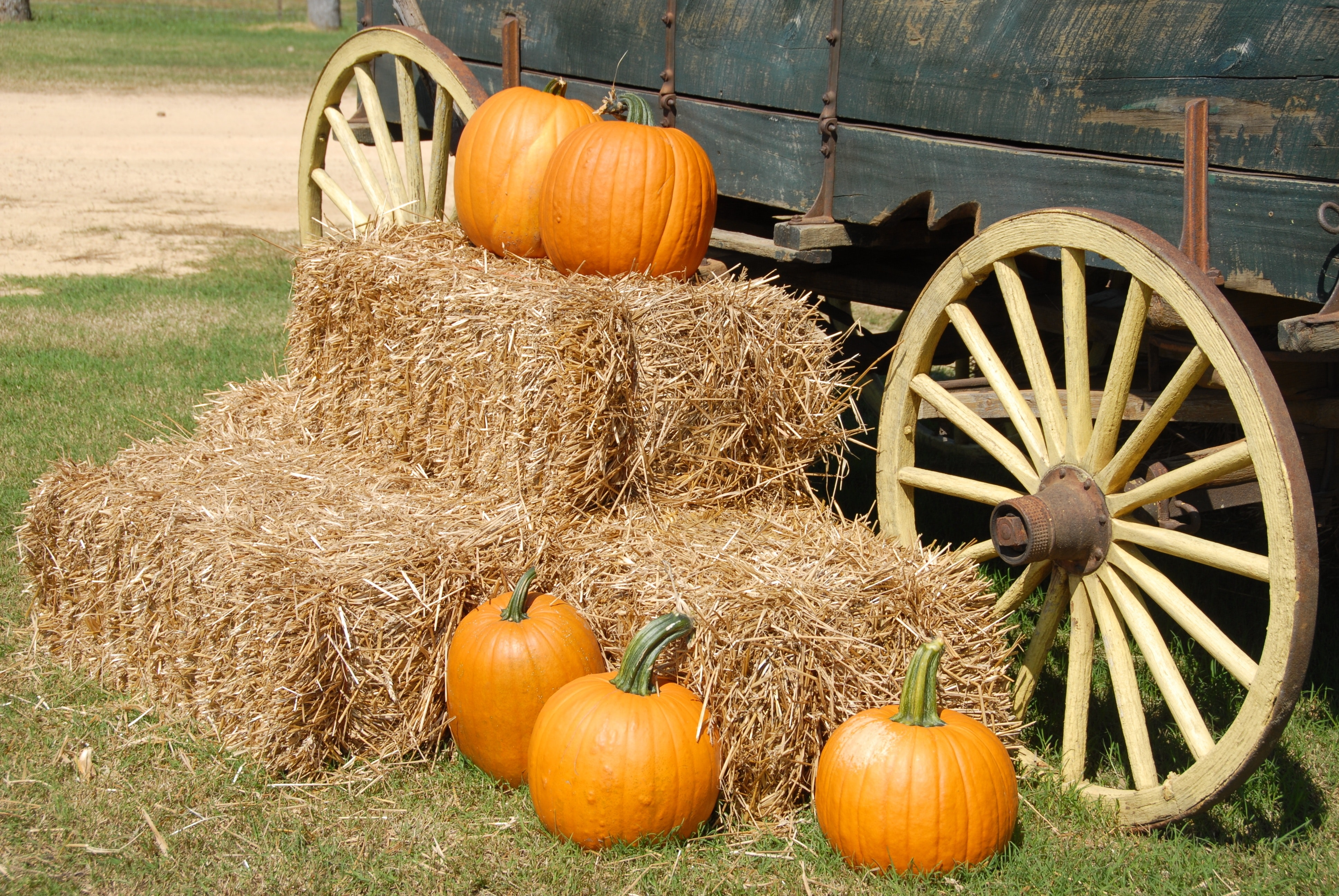 Orange pumpkin on brown hay near gray carriage photo
