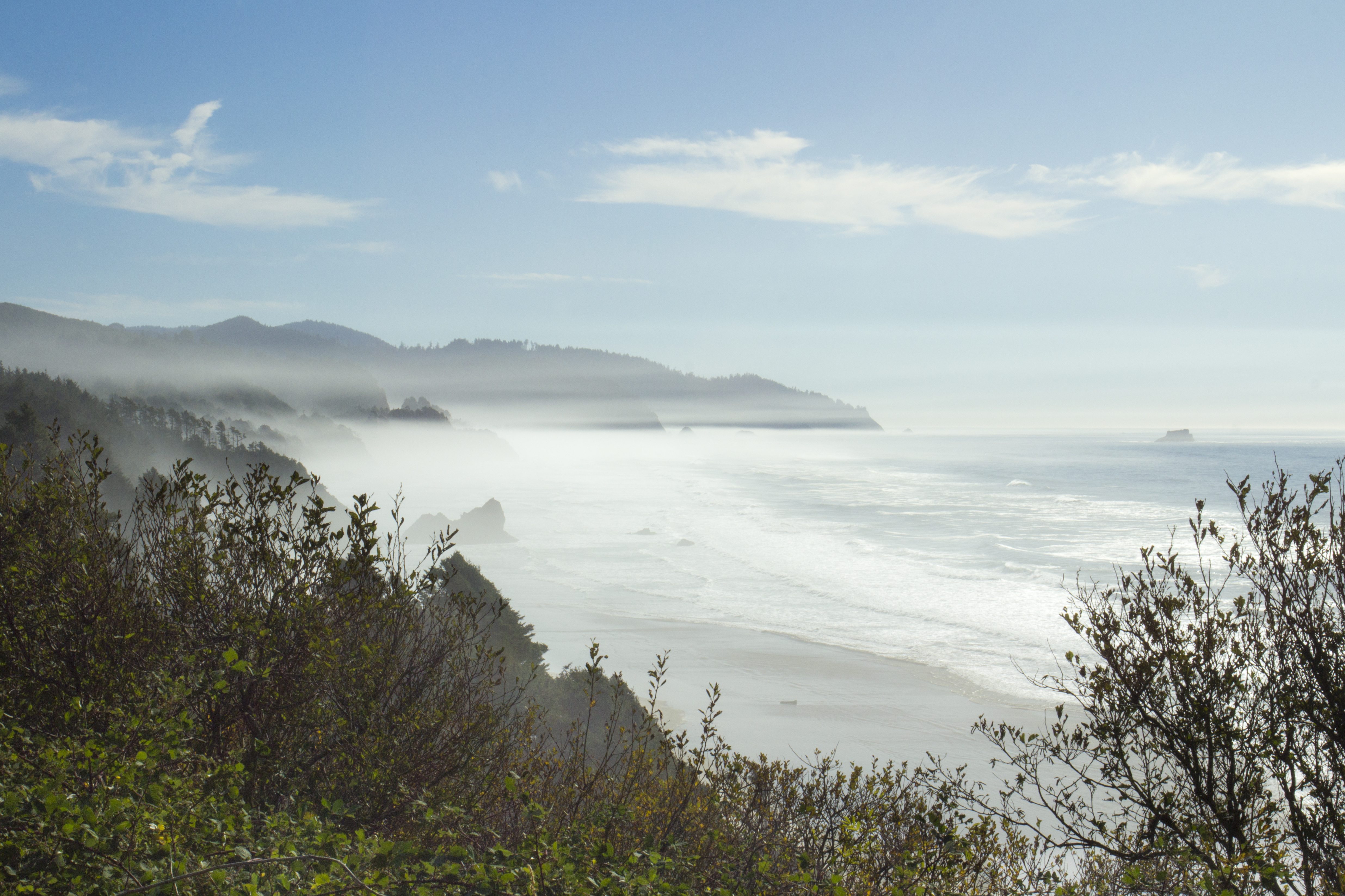 Oregon coast with fog photo