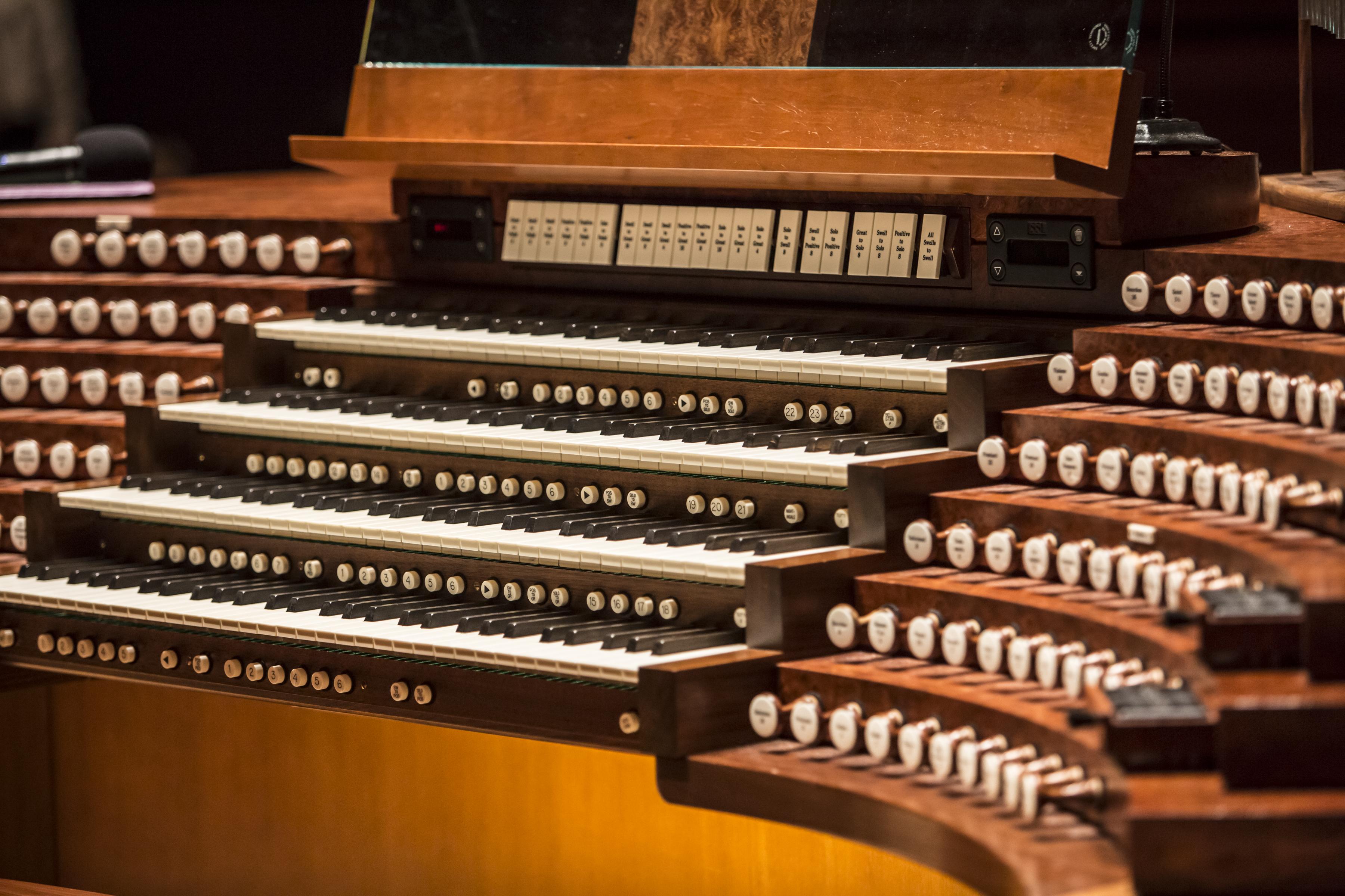 Organ photo