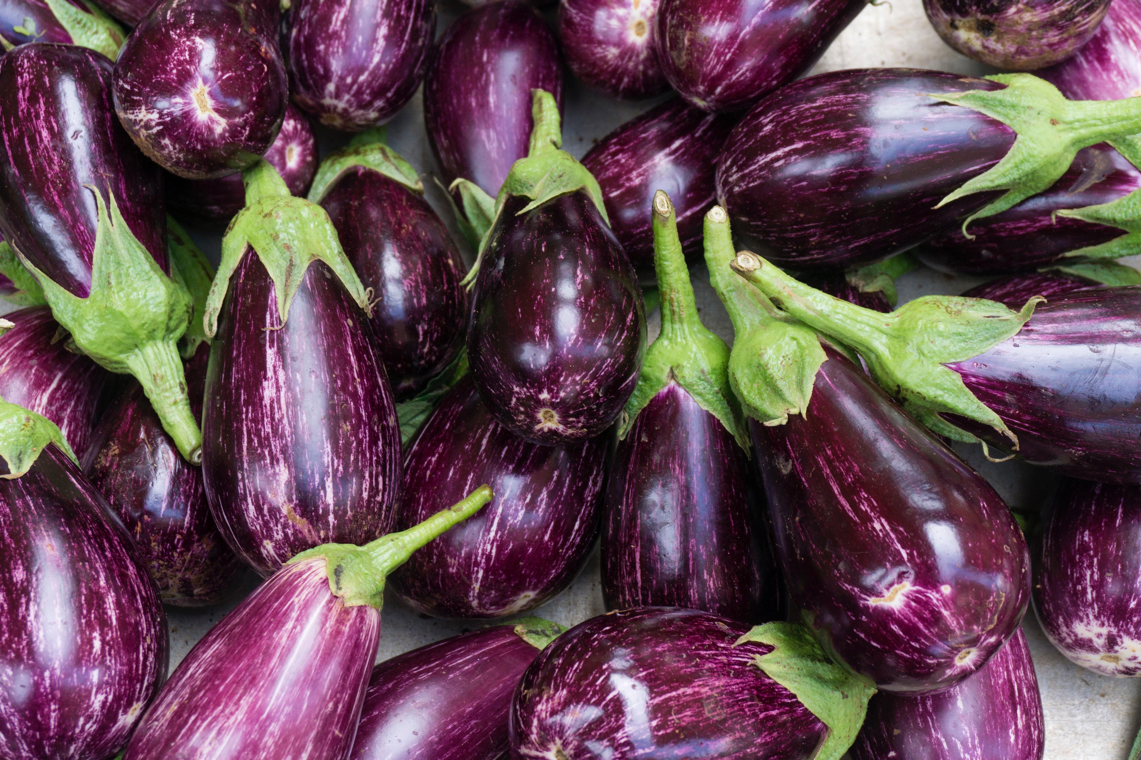 Organic eggplant aubergine photo