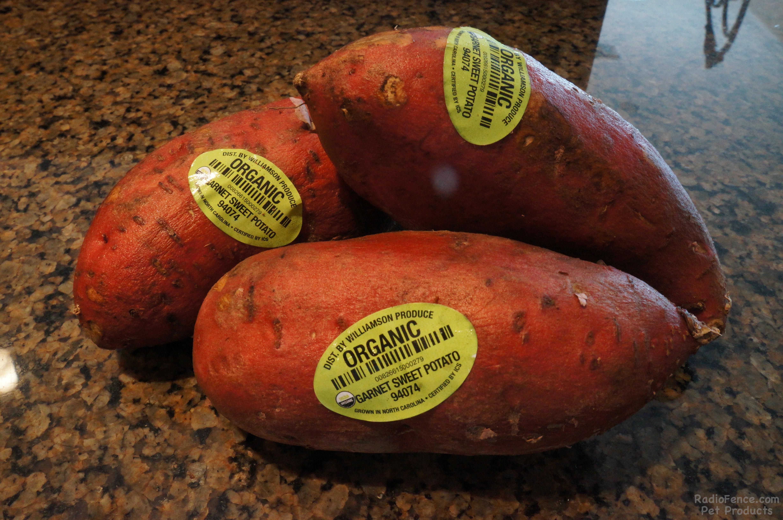 Organic sweet potatoes photo