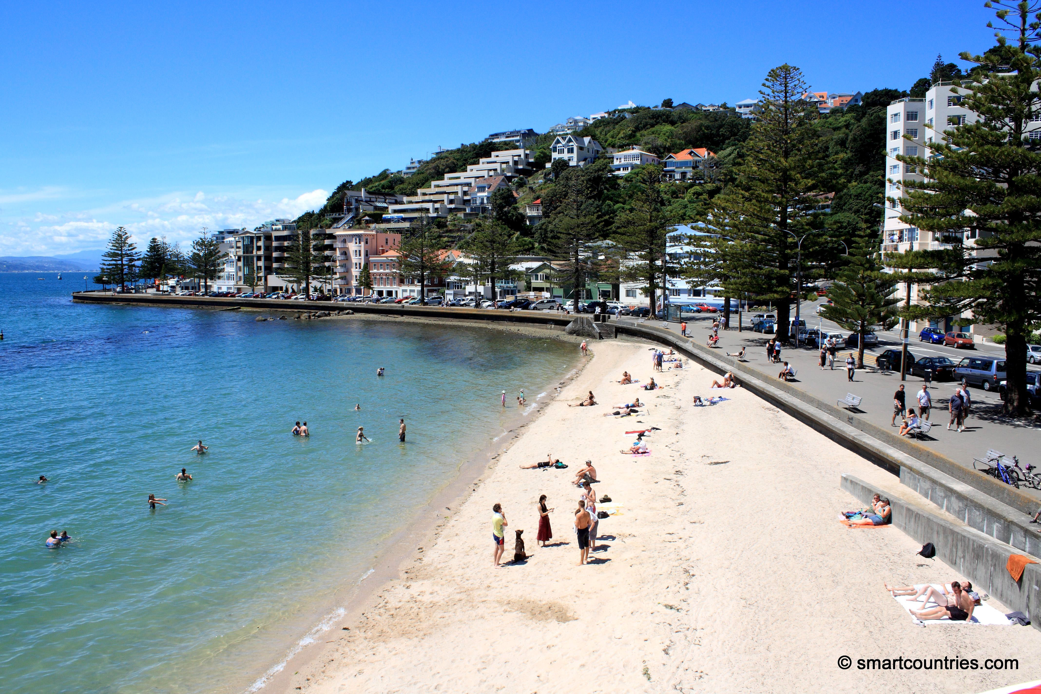 Oriental bay photo
