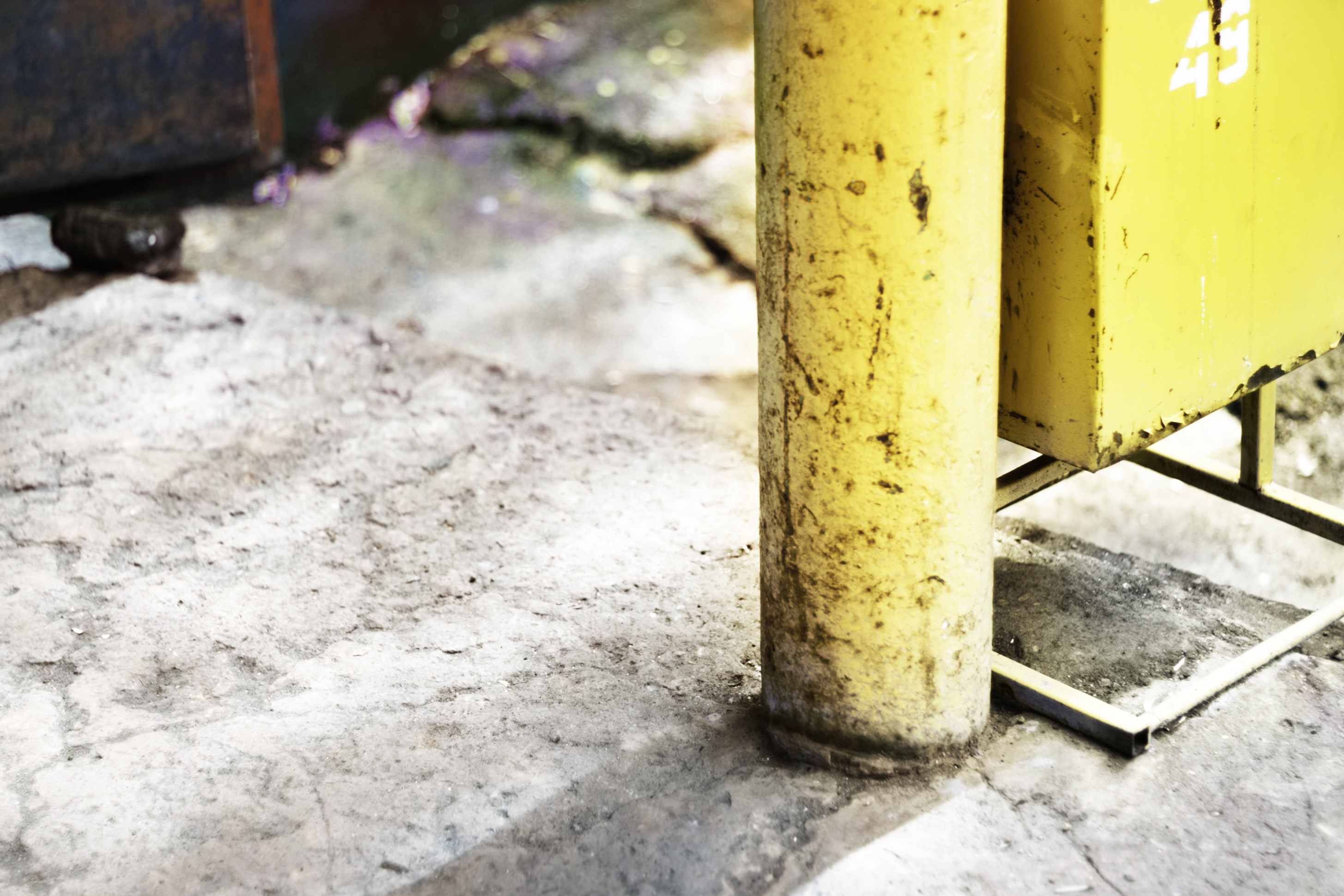outdoor, Abstract, Close-up, Scene, Yellow, HQ Photo