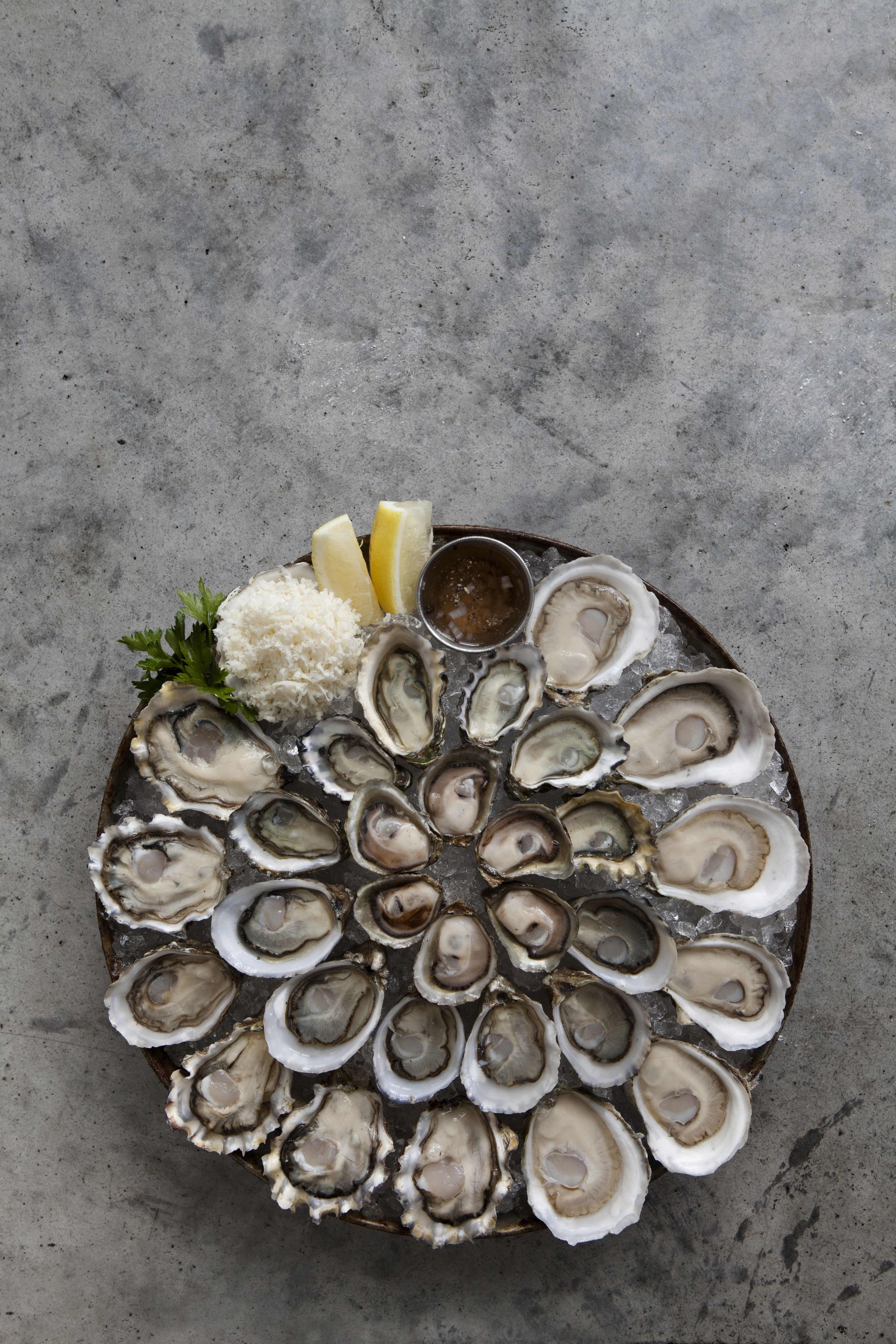 Welcome To Taylor Shellfish Farms of Shelton, WA - The Best Clams ...