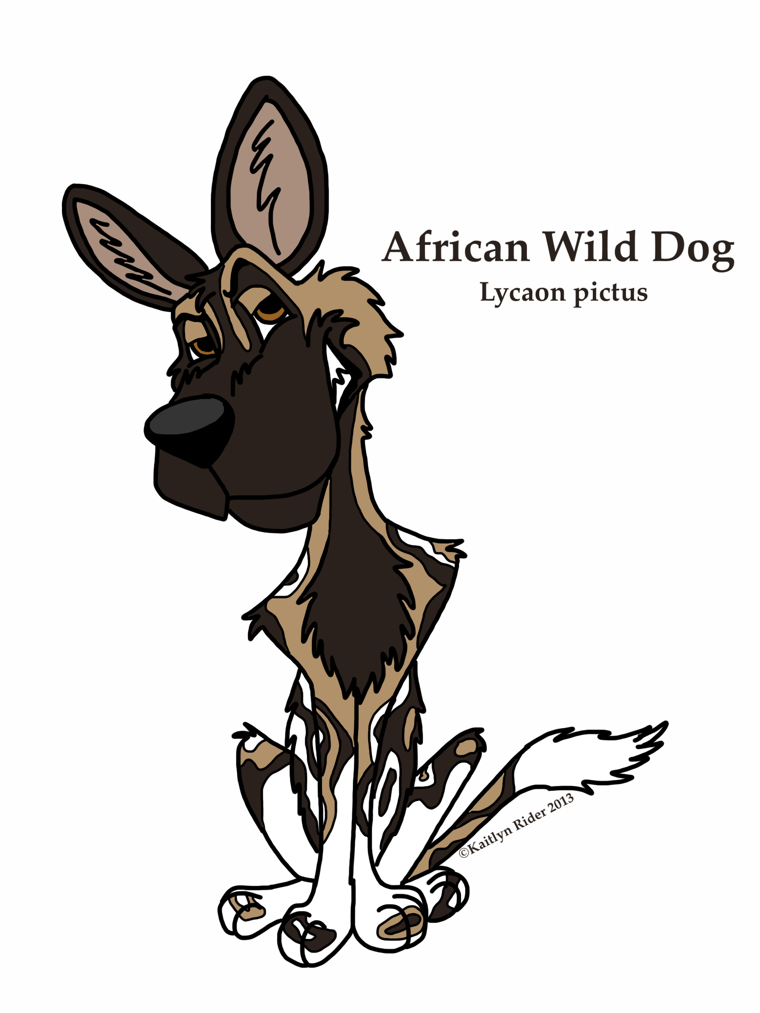 Painted dog cartoon photo