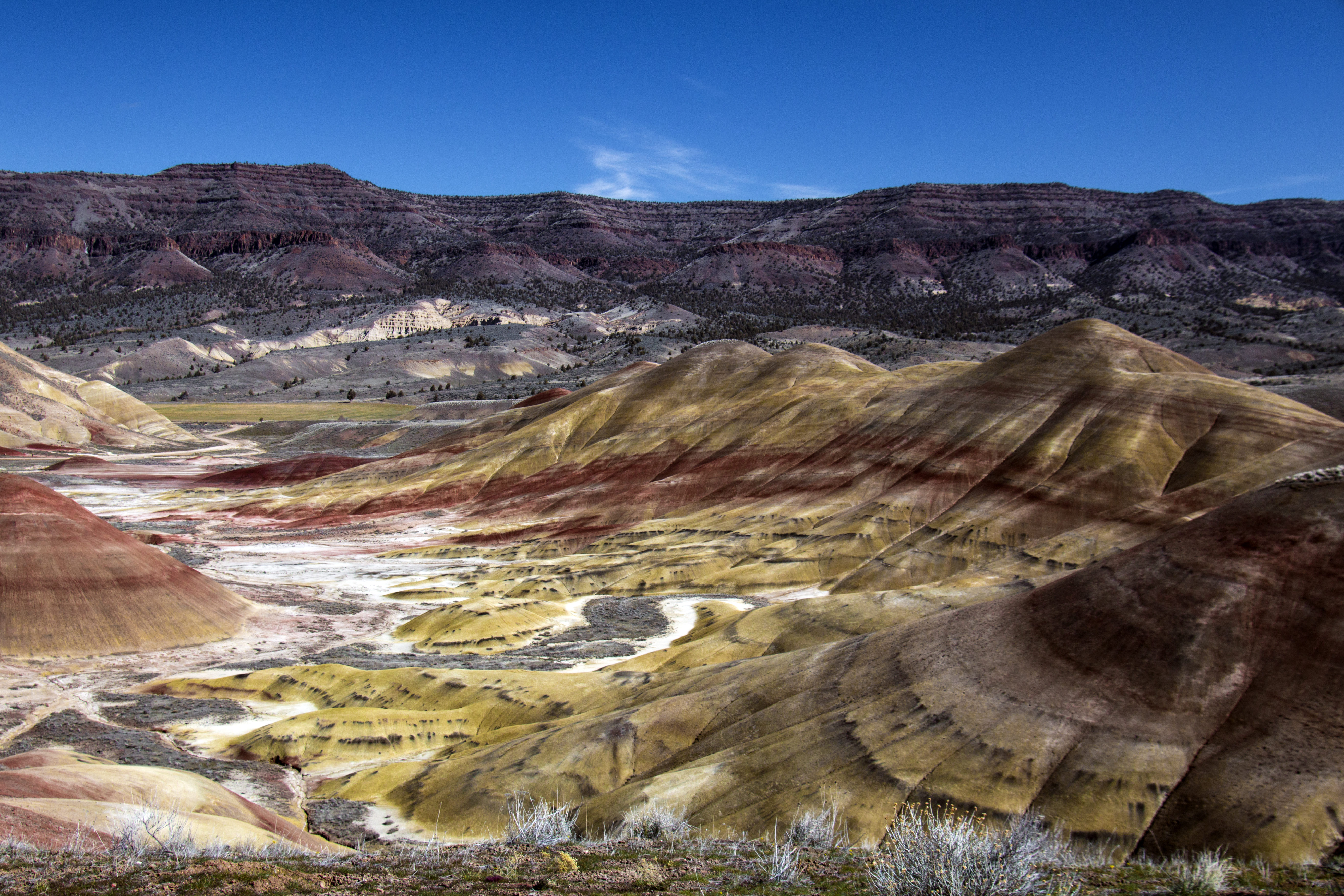 Painted hills, oregon photo