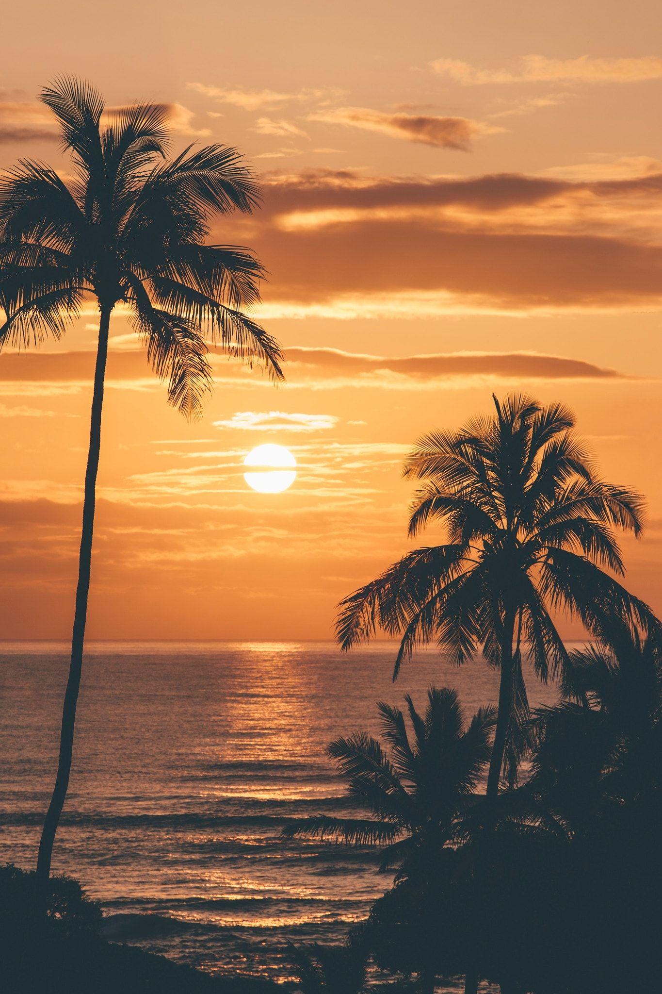Sunrise in Kauai - | Natures Beauty | Pinterest | Sunset, Palm and ...