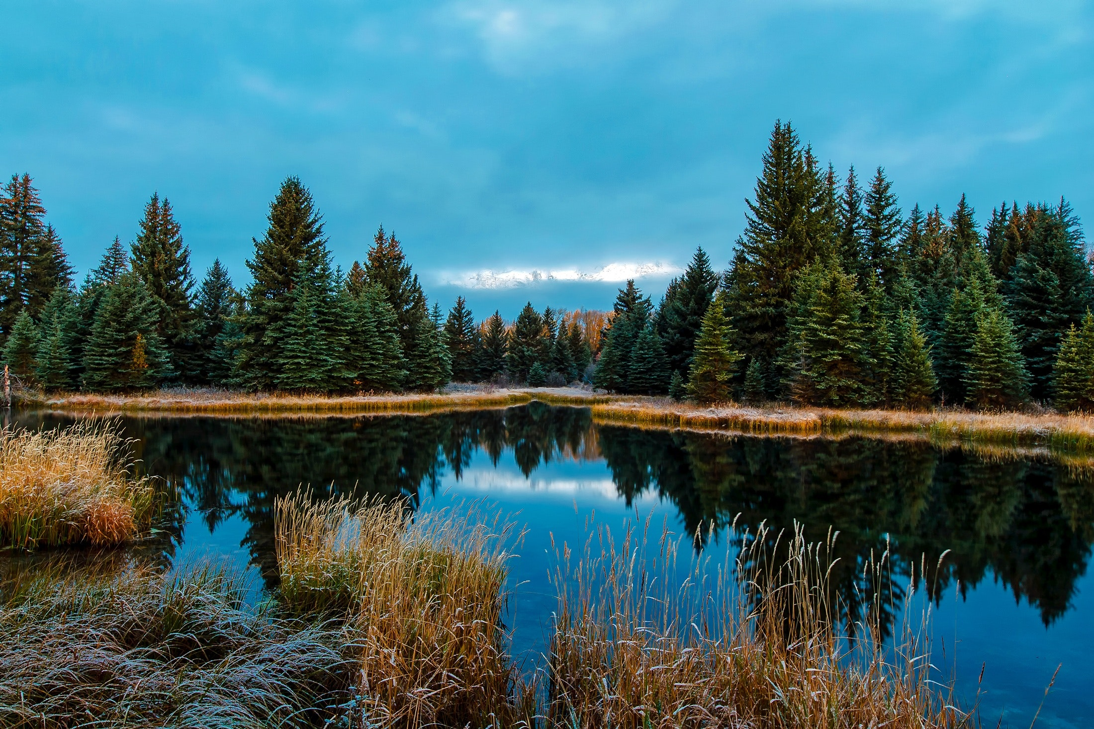 Panoramic view of lake in forest photo