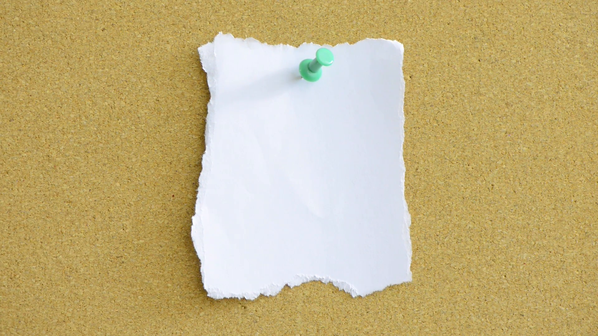 Close up of empty white paper note pinned to office noticeboard ...