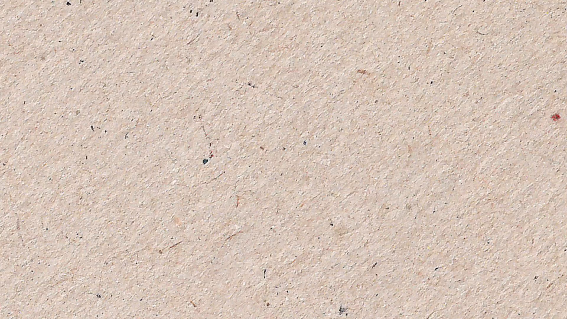 Surface, Texture, Papyrus
