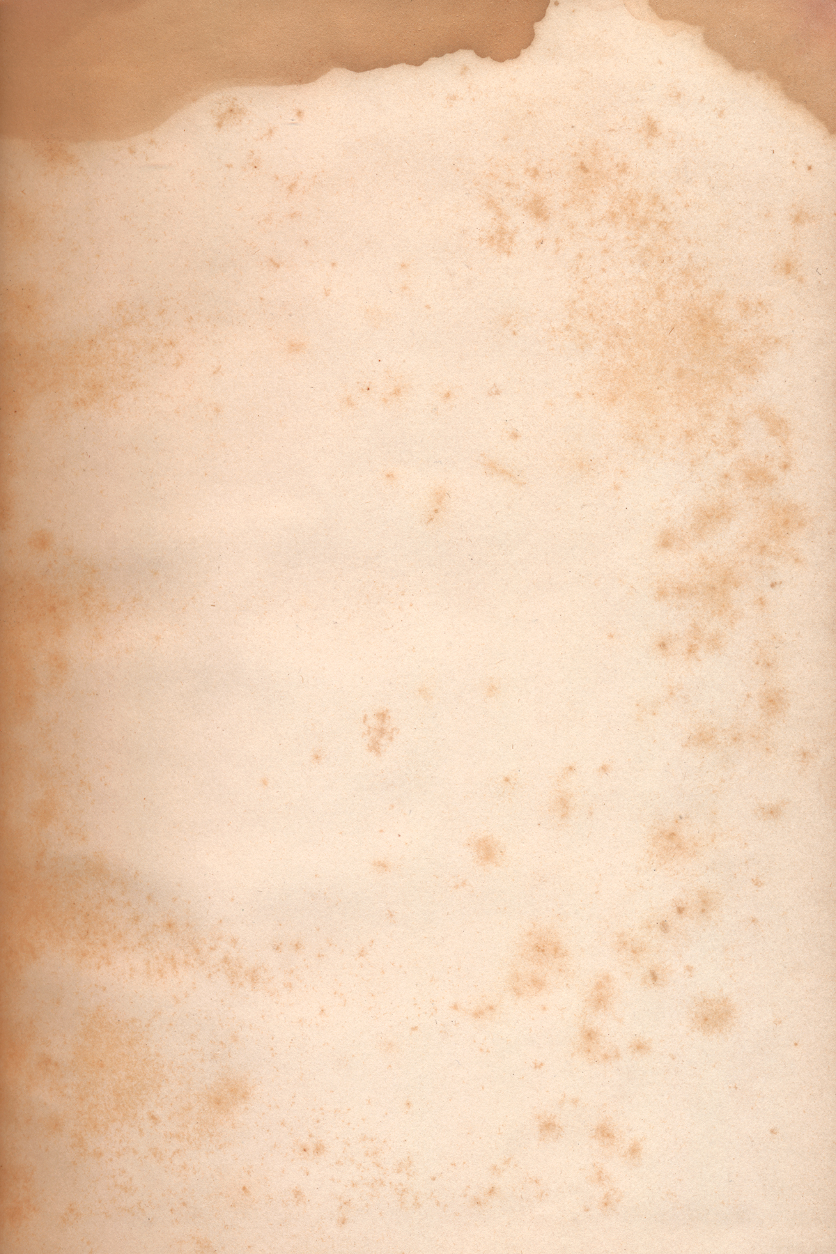 Paper Texture - Foxing Stains, Age, Scrapbooking, Space, Soiled, HQ Photo