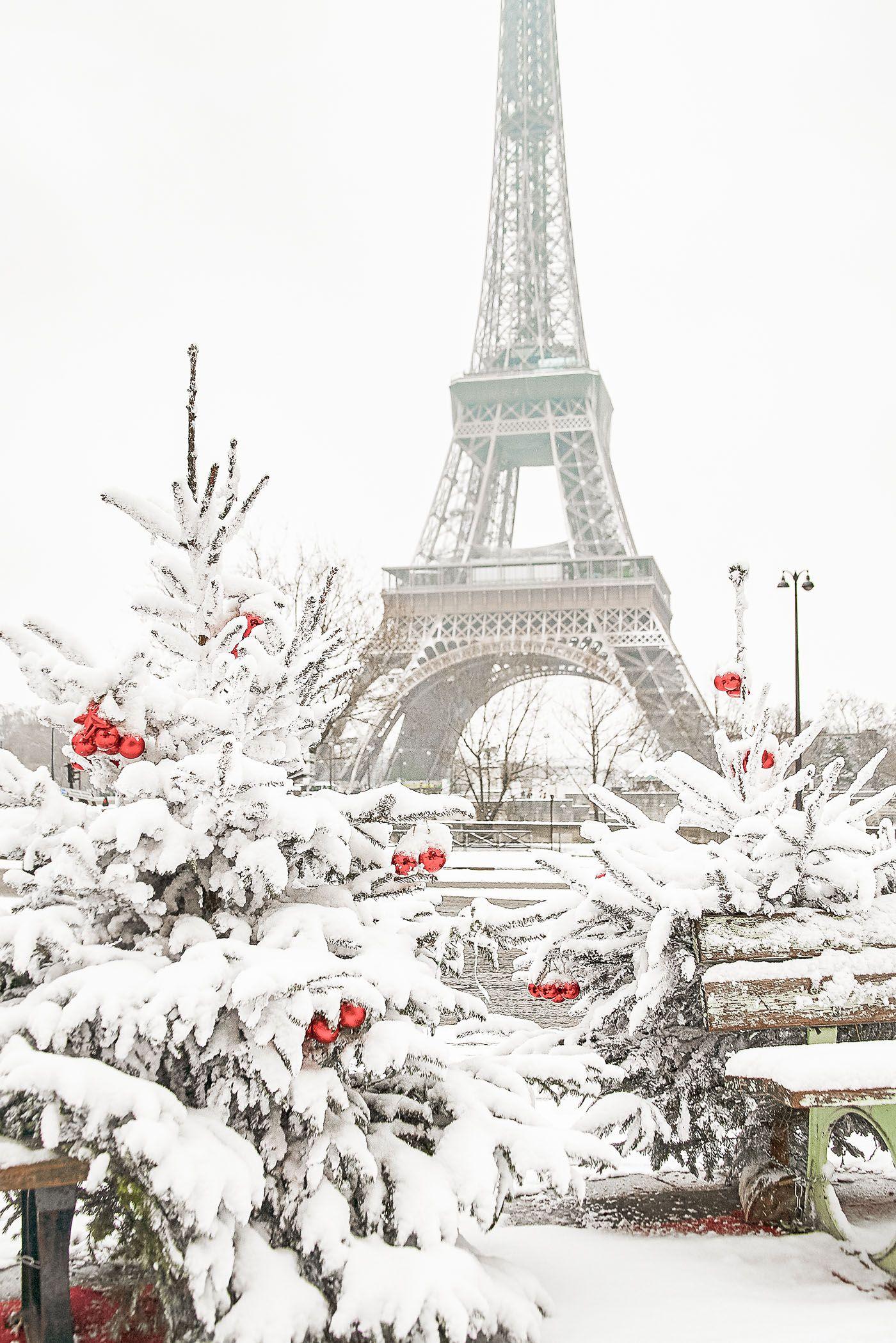 Paris in winter photo