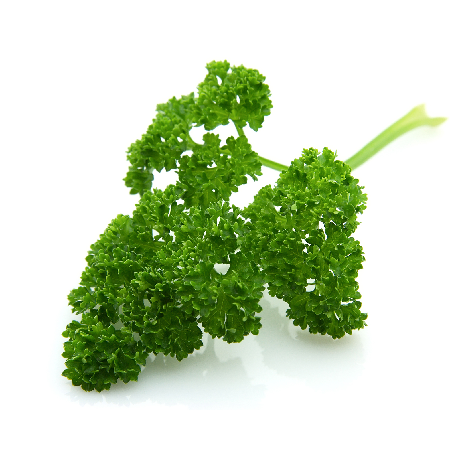 Parsley – 5 A DAY CSA