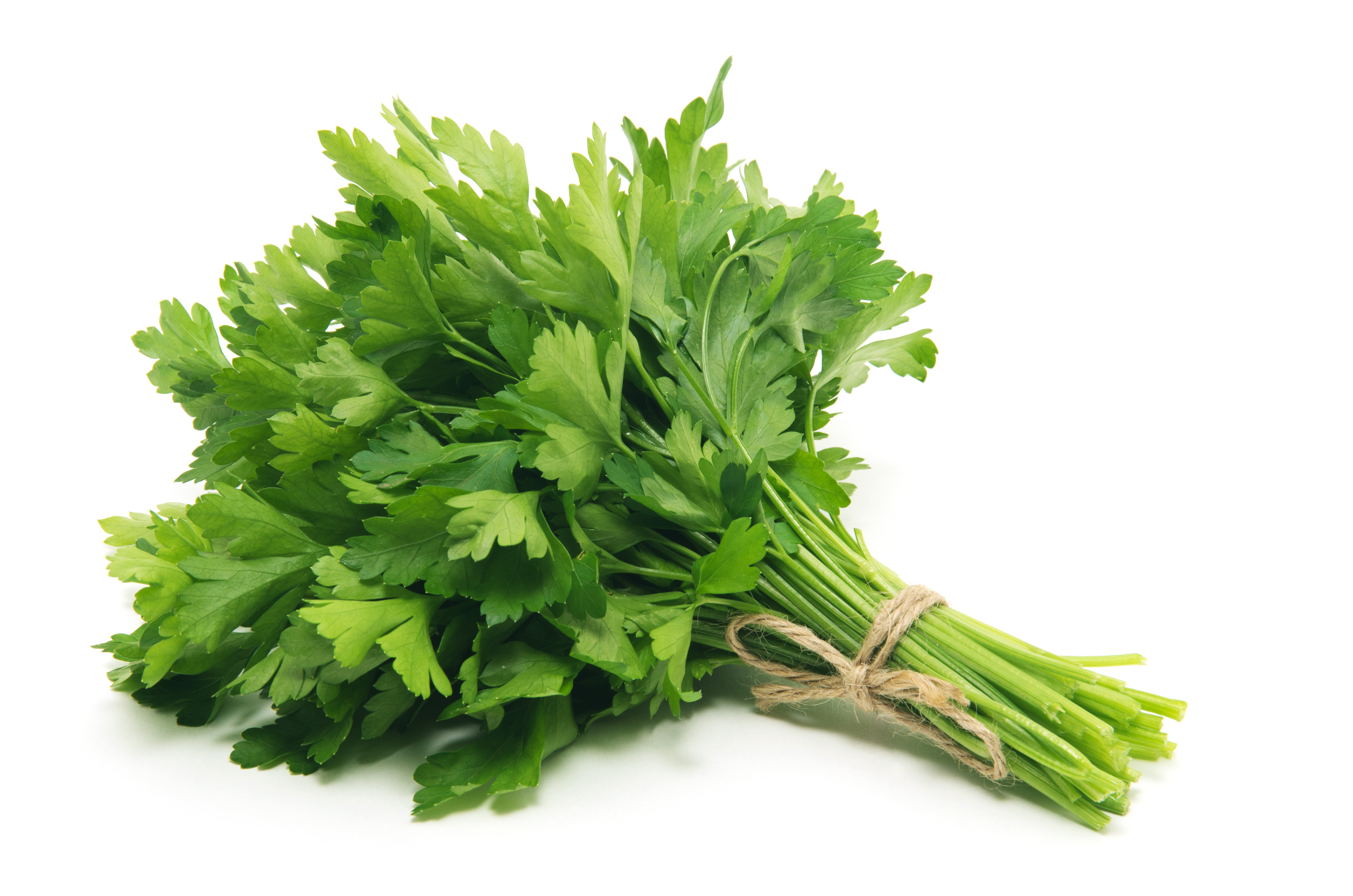 The Many Health Benefits of Parsley - Dr. Ann Wellness