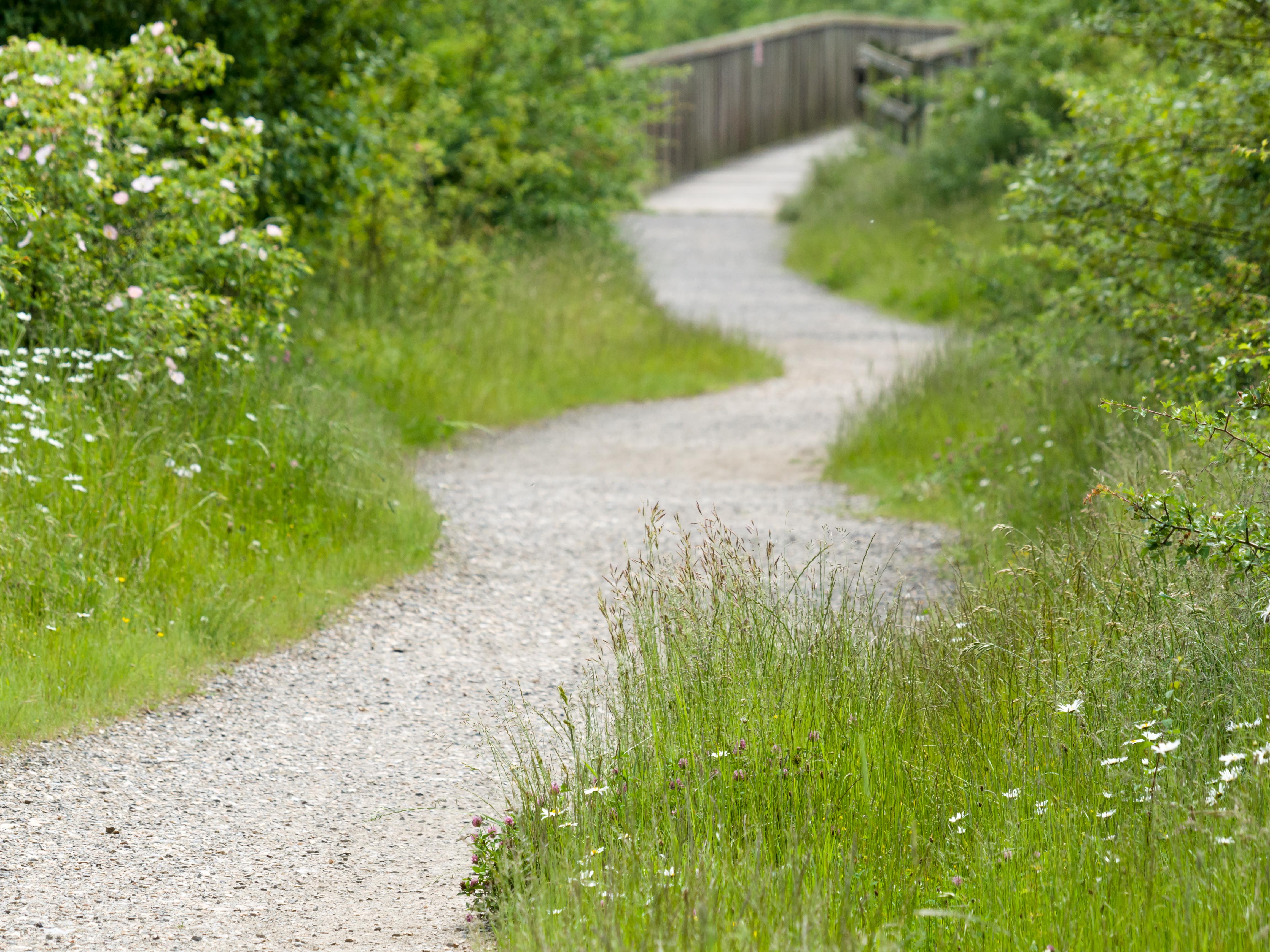 File:Winding path (14354572446).jpg - Wikimedia Commons