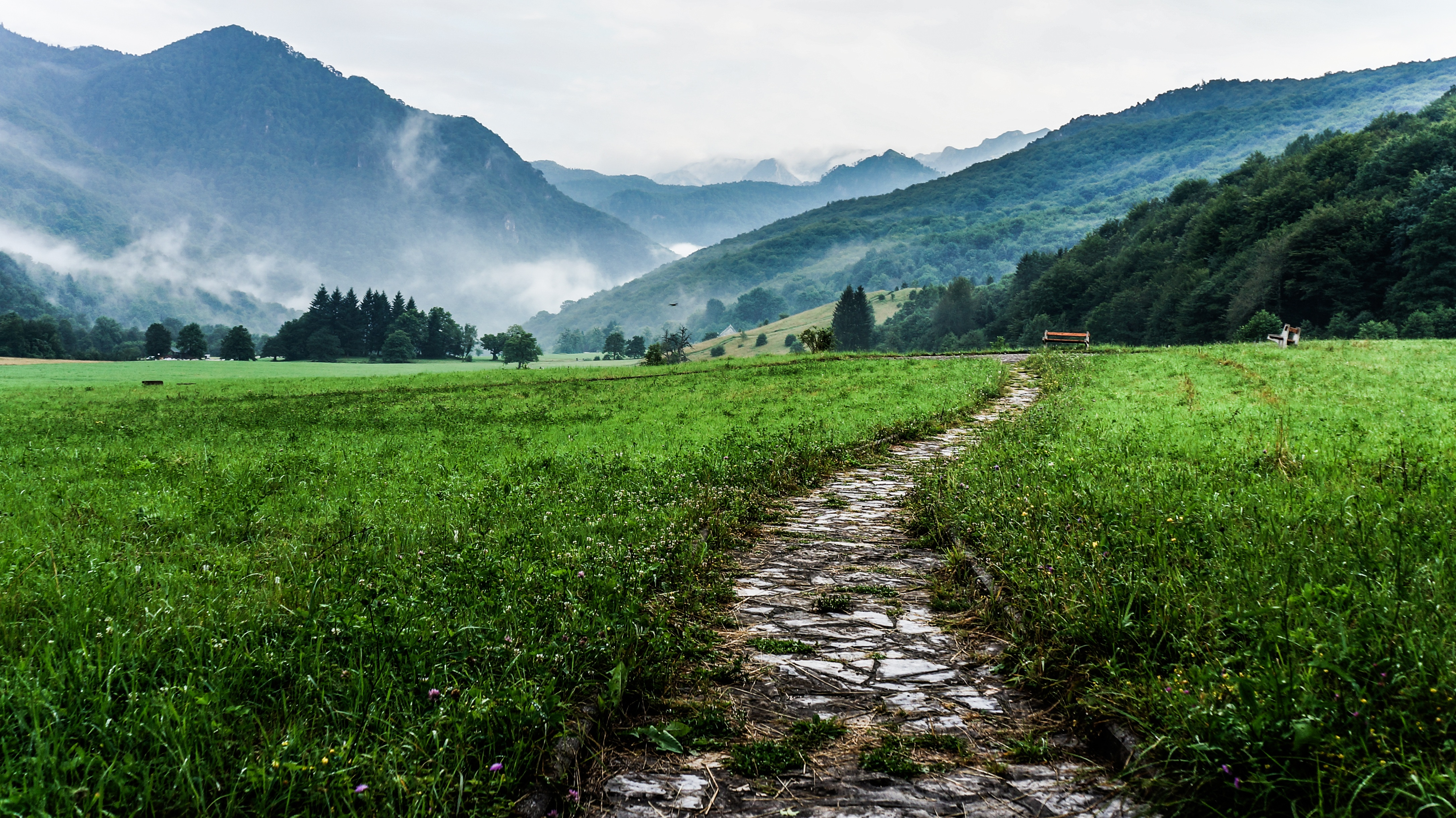 Taking The Path Less Traveled | Be Audacious